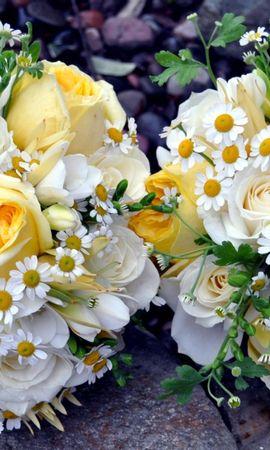127101 скачать обои Цветы, Ромашки, Пара, Зелень, Красиво, Розы, Букеты - заставки и картинки бесплатно