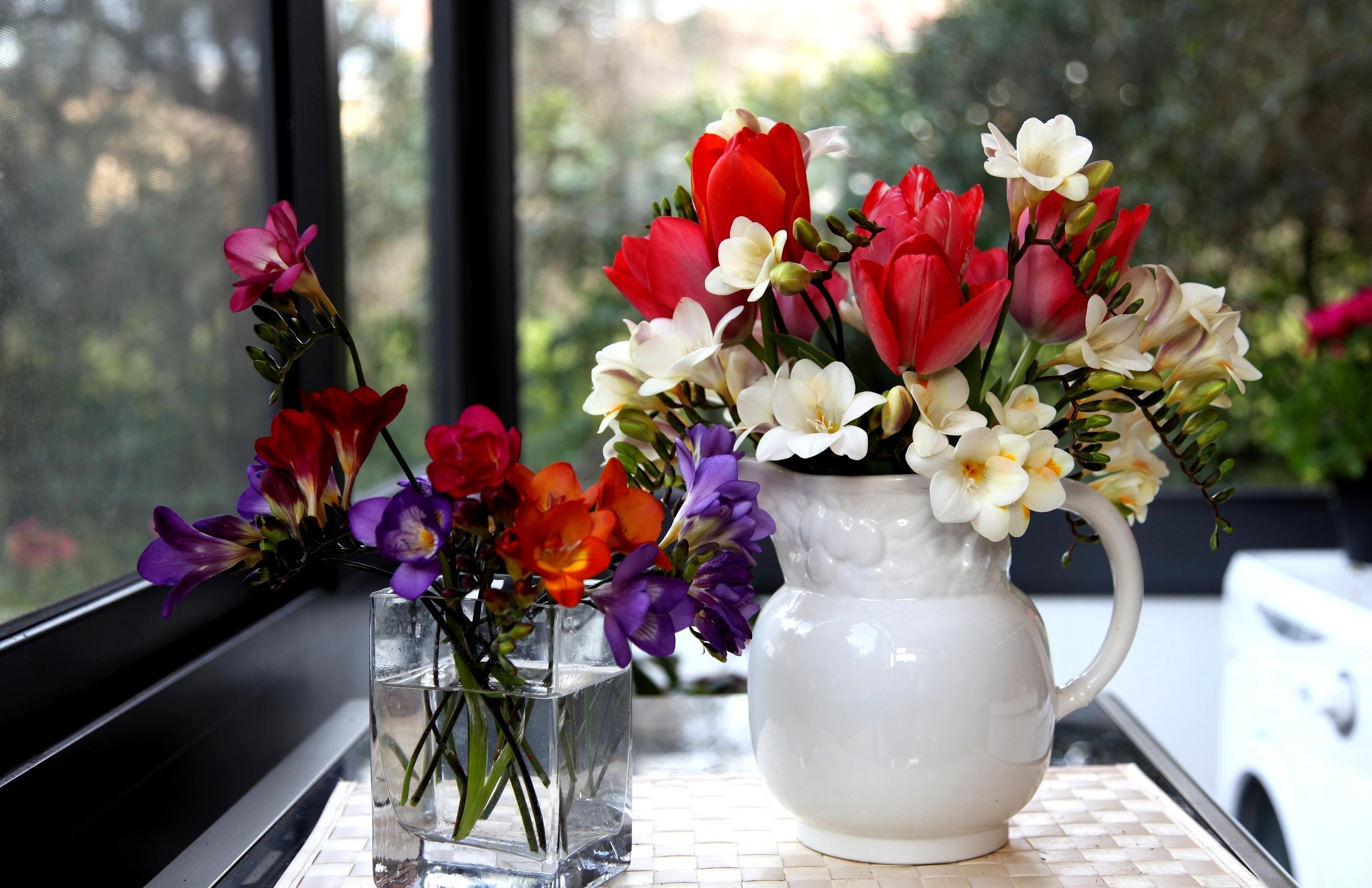 107929 descargar fondo de pantalla Flores, Fresia, Freesia, Vidrio, Jarra, Jarro, Belleza, Tulipanes: protectores de pantalla e imágenes gratis