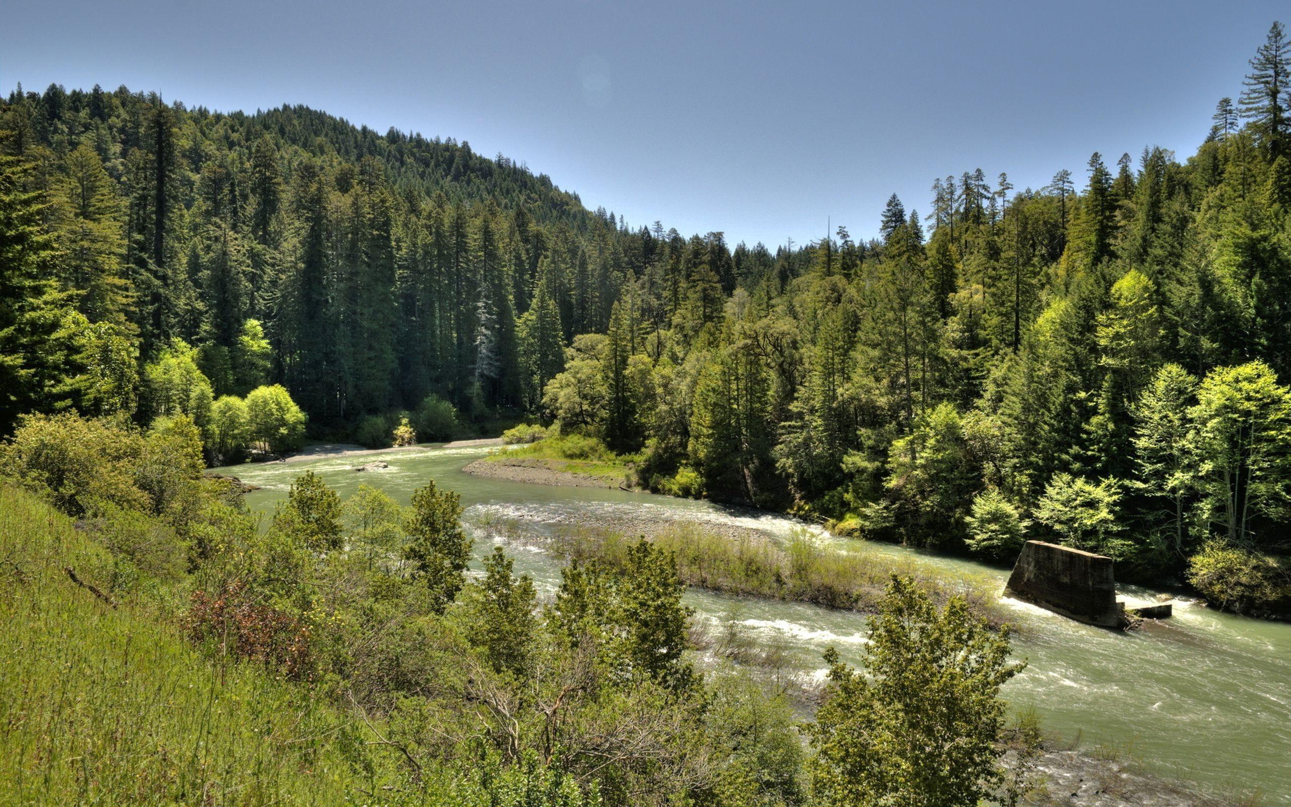 62875 Hintergrundbild 1024x768 kostenlos auf deinem Handy, lade Bilder Natur, Flüsse, Bäume, Sky, Fließen, Fluss 1024x768 auf dein Handy herunter