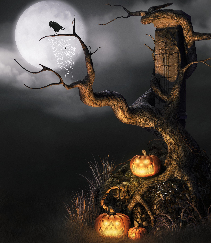 13182 fond d'écran 720x1560 sur votre téléphone gratuitement, téléchargez des images Halloween, Fêtes, Citrouille 720x1560 sur votre mobile