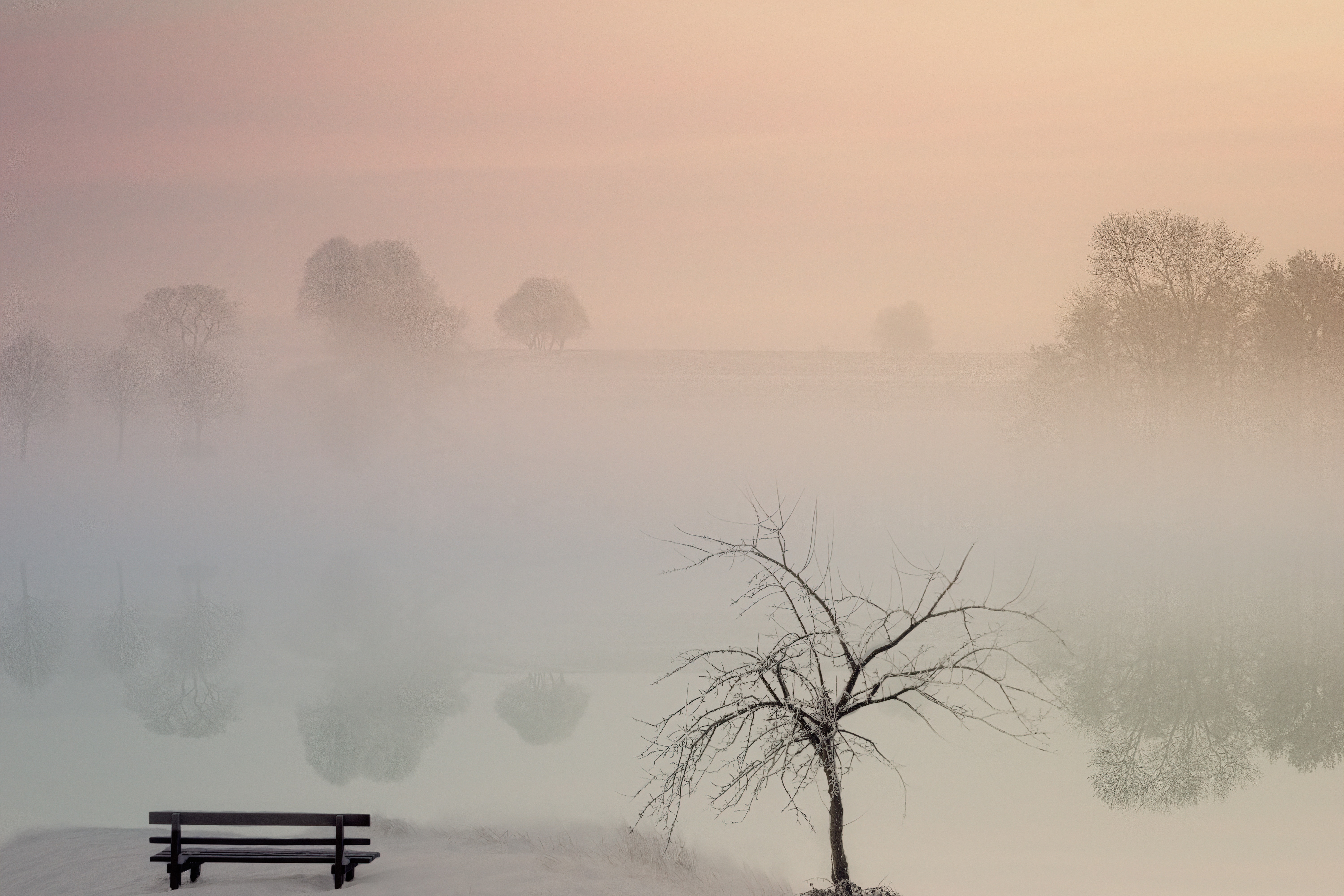 124636 Screensavers and Wallpapers Bench for phone. Download Nature, Lake, Shore, Bank, Fog, Bench pictures for free