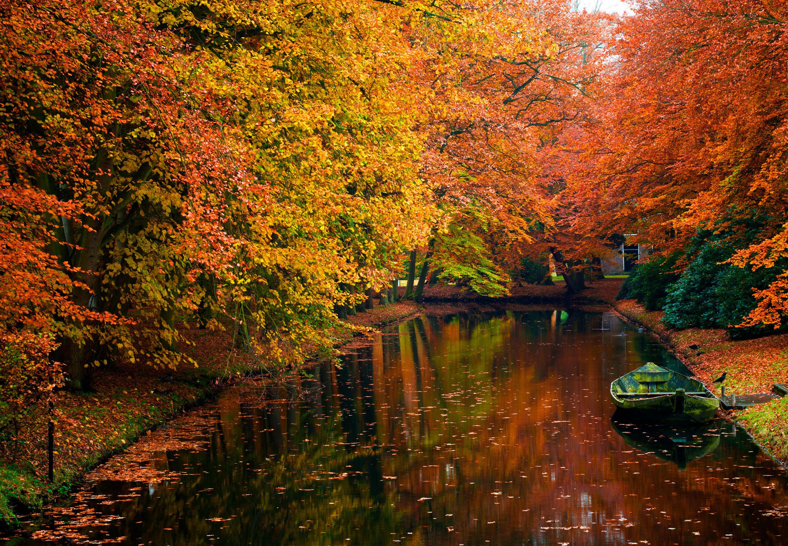 22274 скачать обои Пейзаж, Река, Деревья, Осень, Лодки - заставки и картинки бесплатно