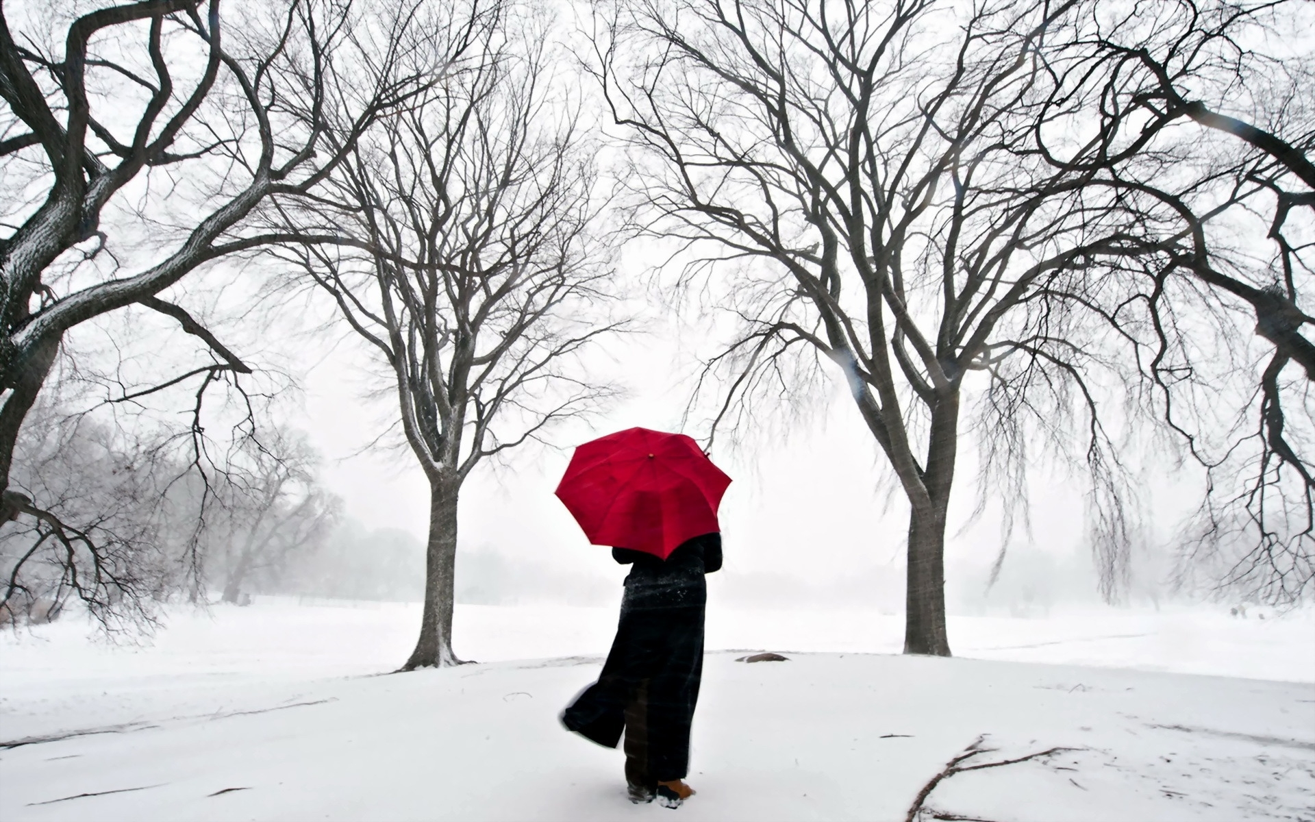 44862 download wallpaper Landscape, Winter, Snow screensavers and pictures for free