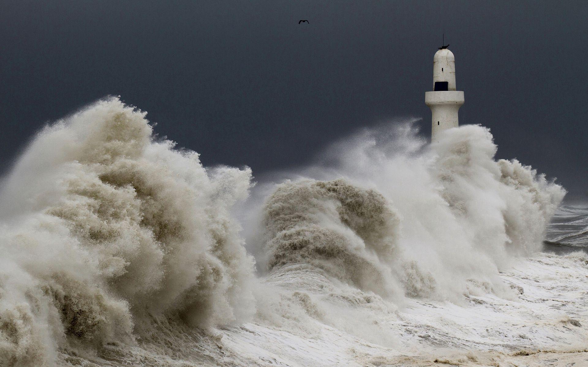 71287 Заставки и Обои Волны на телефон. Скачать Природа, Шторм, Буря, Маяк, Небо, Волны, Птицы картинки бесплатно
