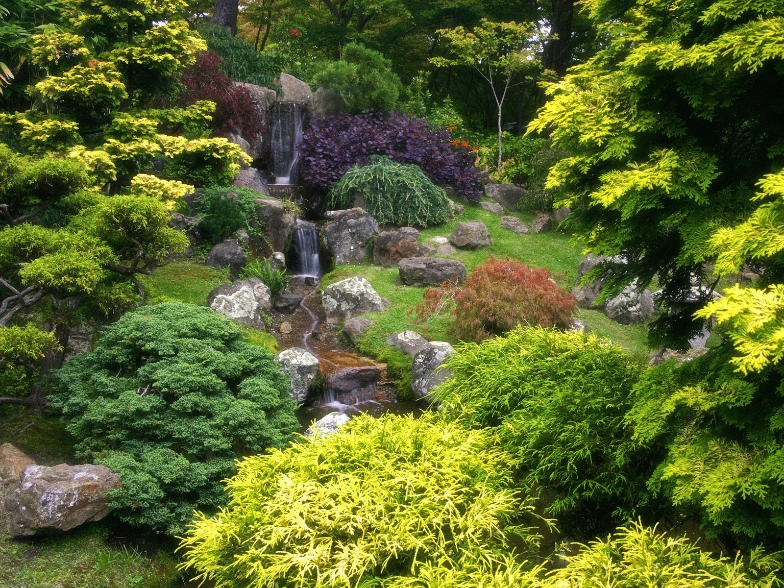 5217 download wallpaper Plants, Landscape, Trees screensavers and pictures for free
