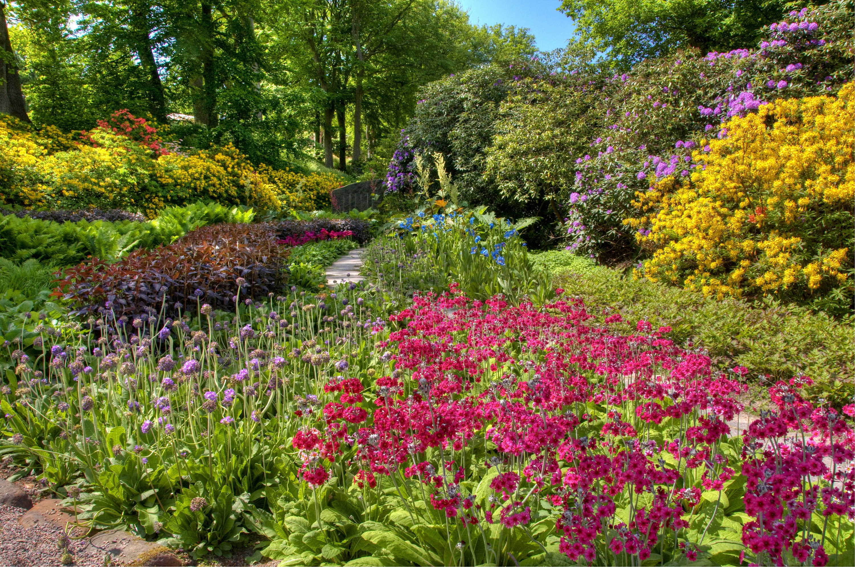 65894 download wallpaper Nature, Garden, Flower Beds, Abundance, Colors, Color, Assorted, Bush, Flowers screensavers and pictures for free
