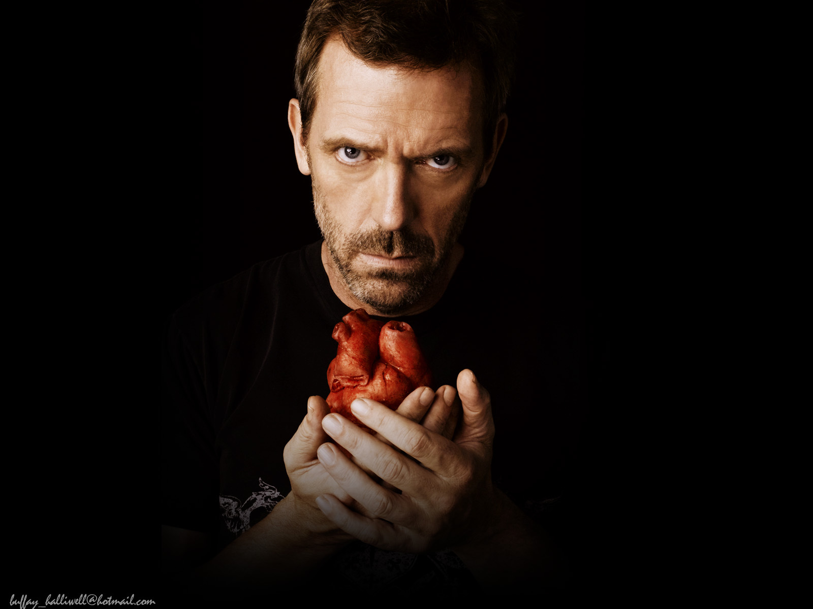 10076 download wallpaper Cinema, People, Actors, House M.d., Hugh Laurie screensavers and pictures for free