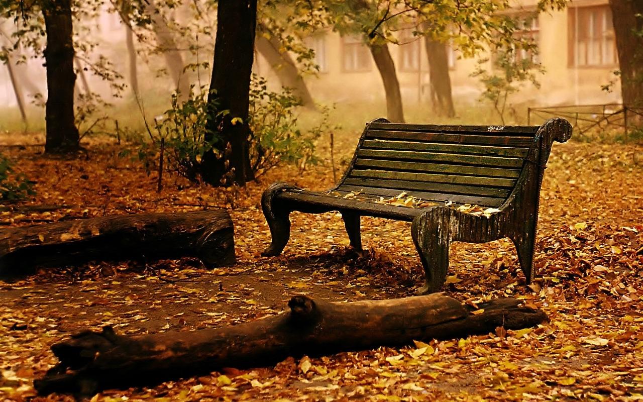 6981 скачать обои Пейзаж, Осень, Артфото - заставки и картинки бесплатно