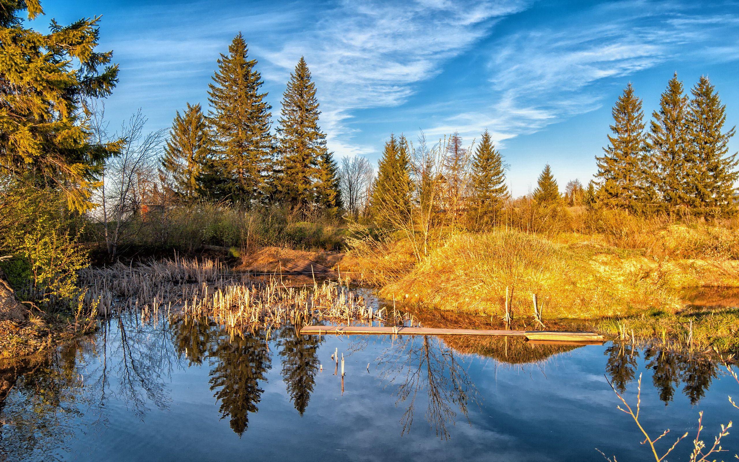86615 завантажити шпалери Природа, Озеро, Ліс, Дерева, Осінь - заставки і картинки безкоштовно