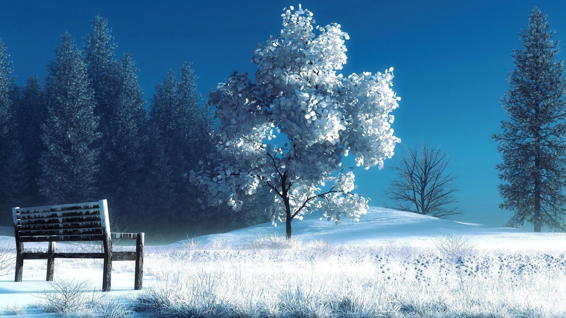 72119 Screensavers and Wallpapers Bench for phone. Download Landscape, Winter, Nature, Trees, Snow, Bench pictures for free