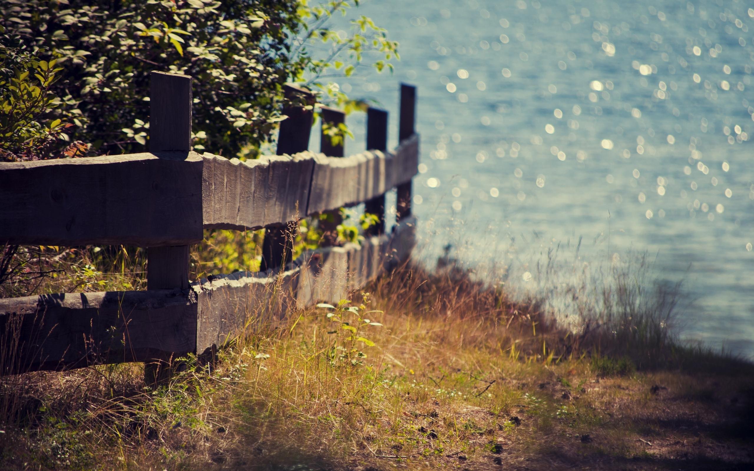 26501 免費下載壁紙 景观, 草, 海 屏保和圖片