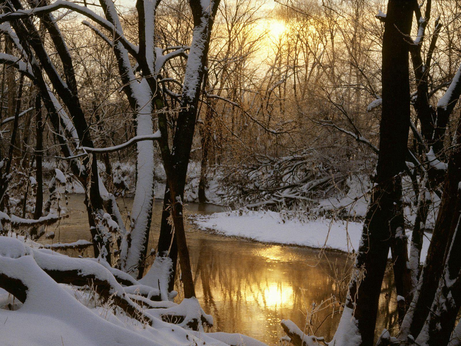 125113 descargar fondo de pantalla Naturaleza, Ríos, Bosque, Invierno, Reflexión, Sol: protectores de pantalla e imágenes gratis