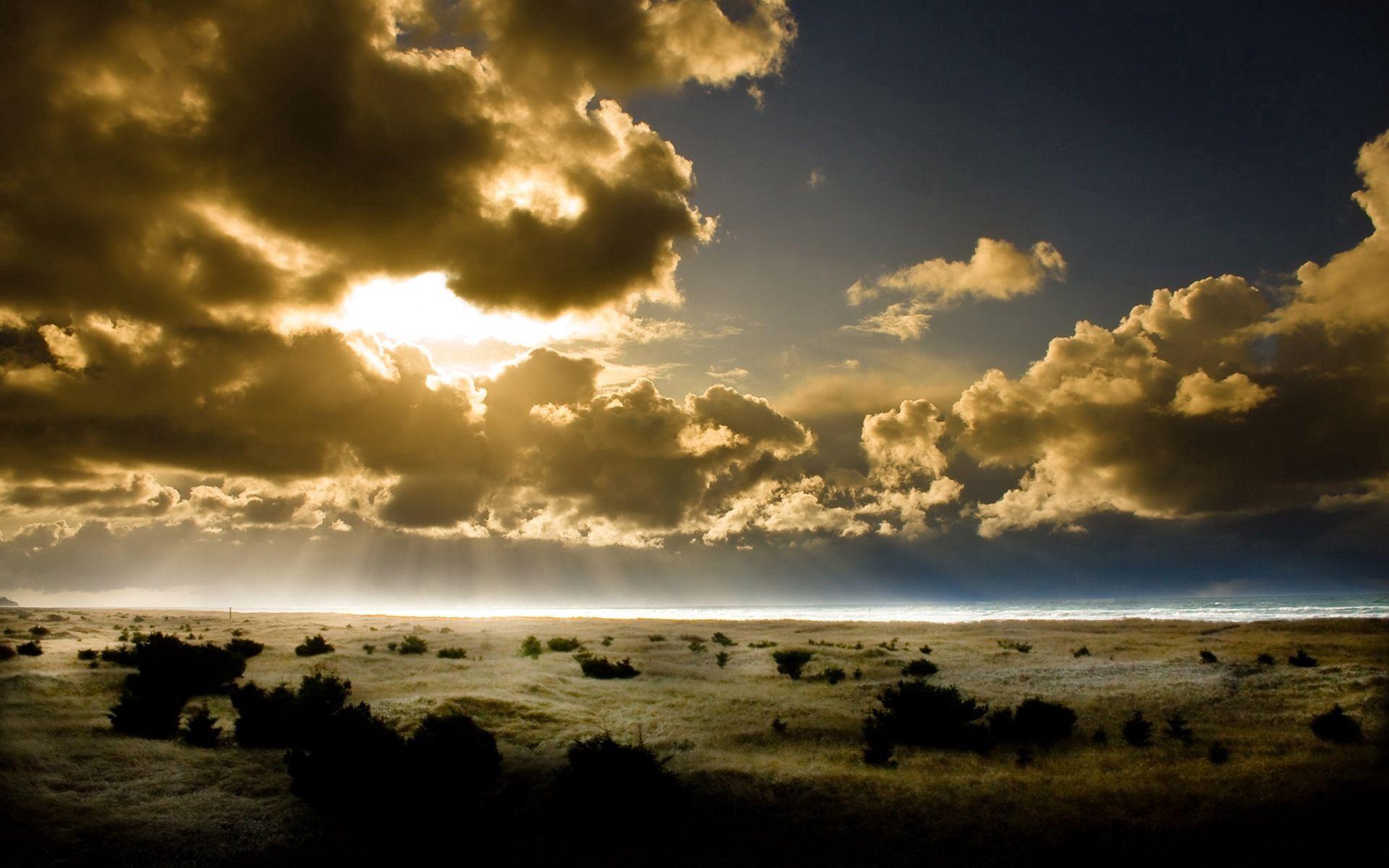 90056 скачать обои Природа, Облака, Свет, Очертания, Земля, Небо, Лучи, Кусты, Солнце - заставки и картинки бесплатно