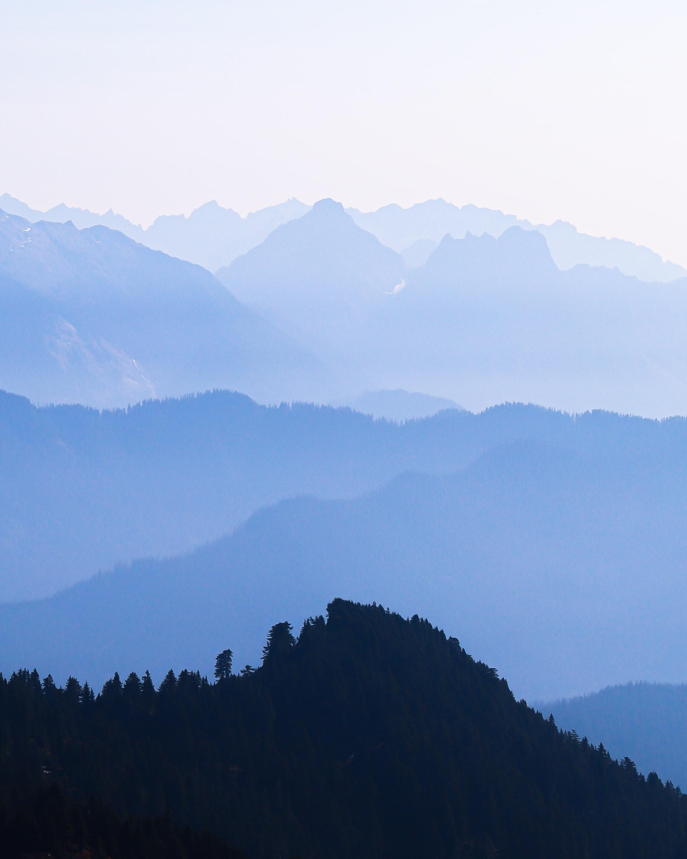146312 скачать обои Природа, Скалы, Лес, Деревья, Даль, Горы - заставки и картинки бесплатно