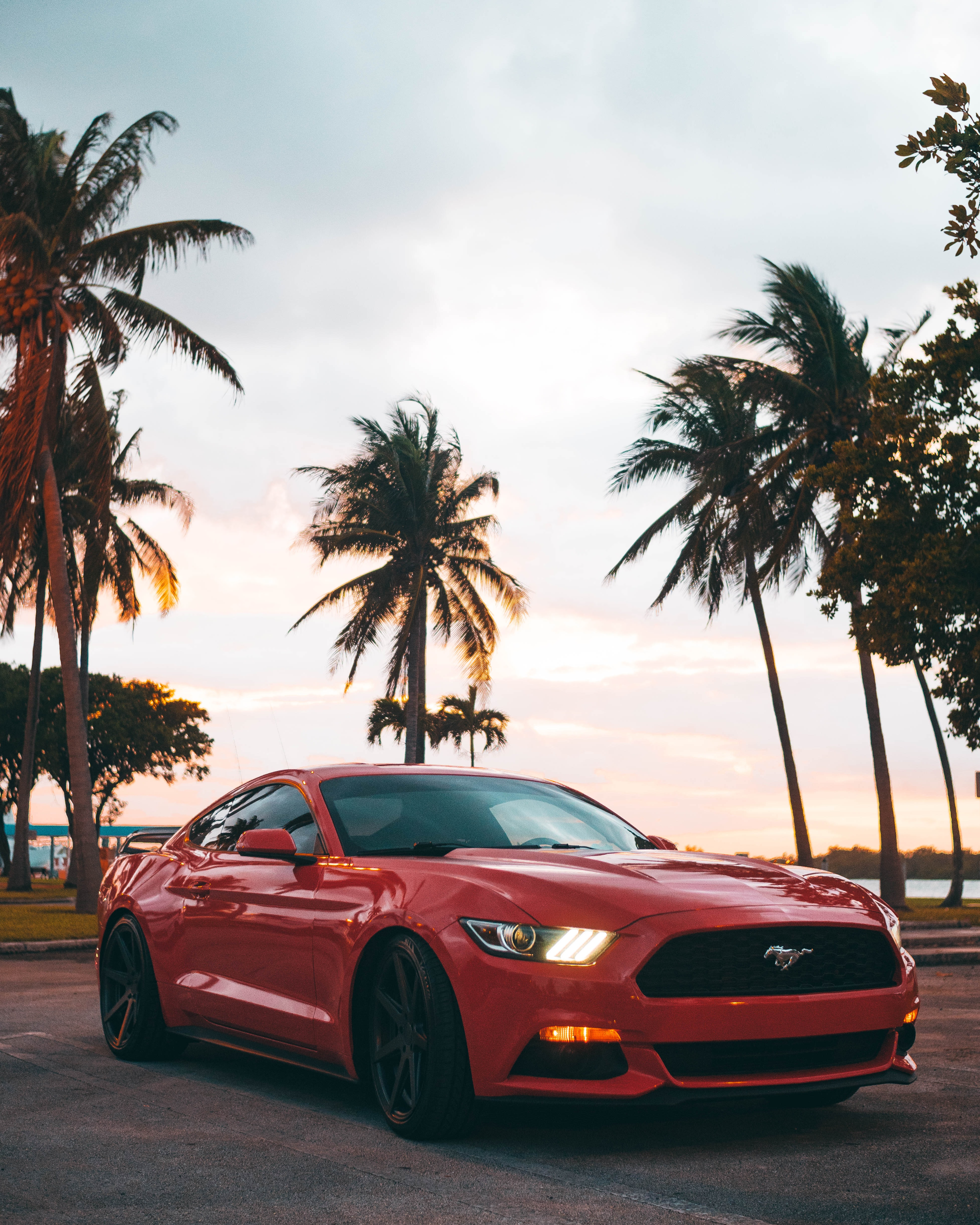 135288 download wallpaper Sports, Mustang, Cars, Car, Machine, Sports Car screensavers and pictures for free