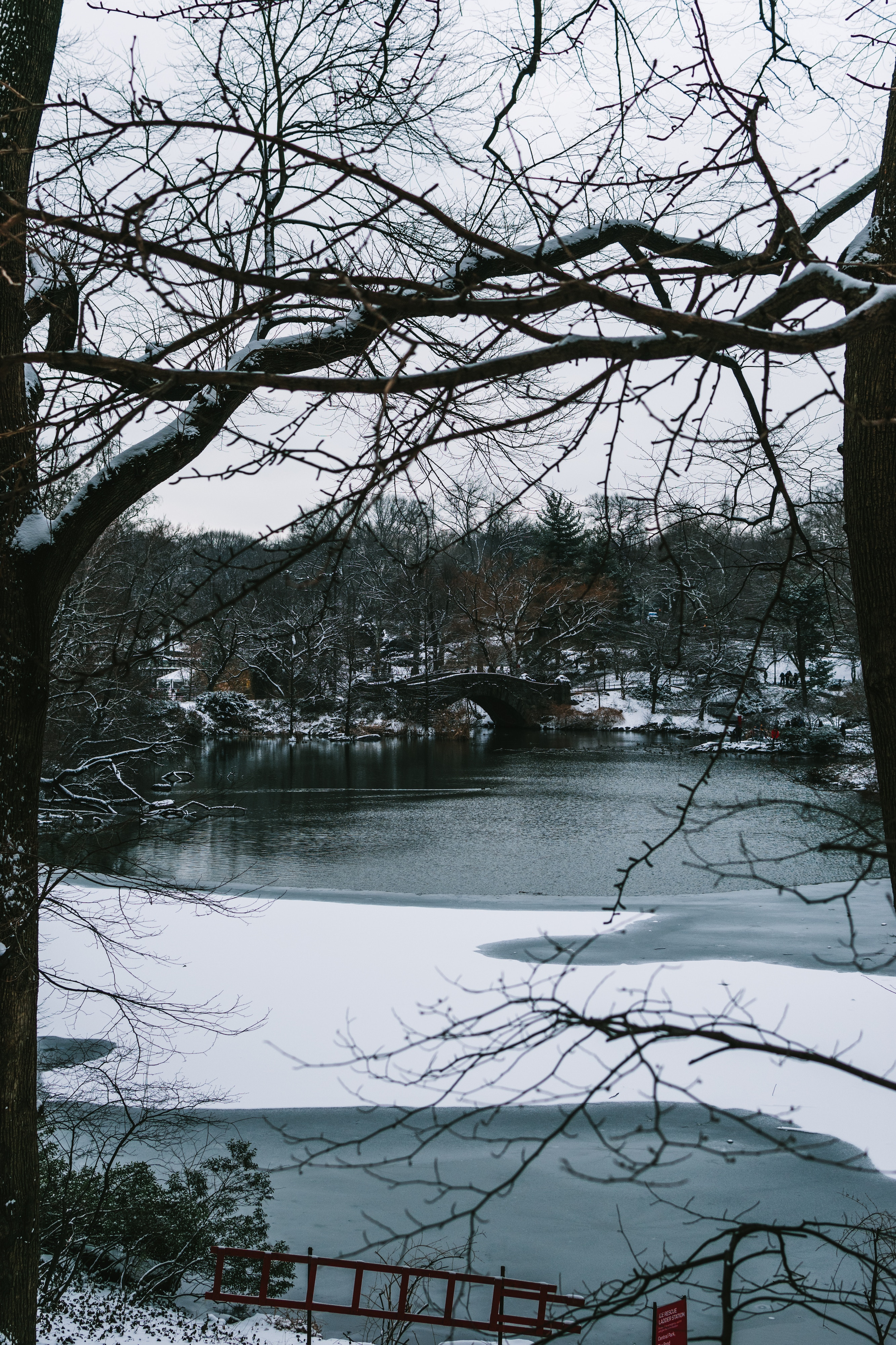 136717 download wallpaper Rivers, Trees, Bridge, Branches, Snow, Park, Cities screensavers and pictures for free