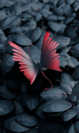 128113 Screensavers and Wallpapers 3D for phone. Download 3D, Butterfly, Leaves, Wings, Contrast pictures for free