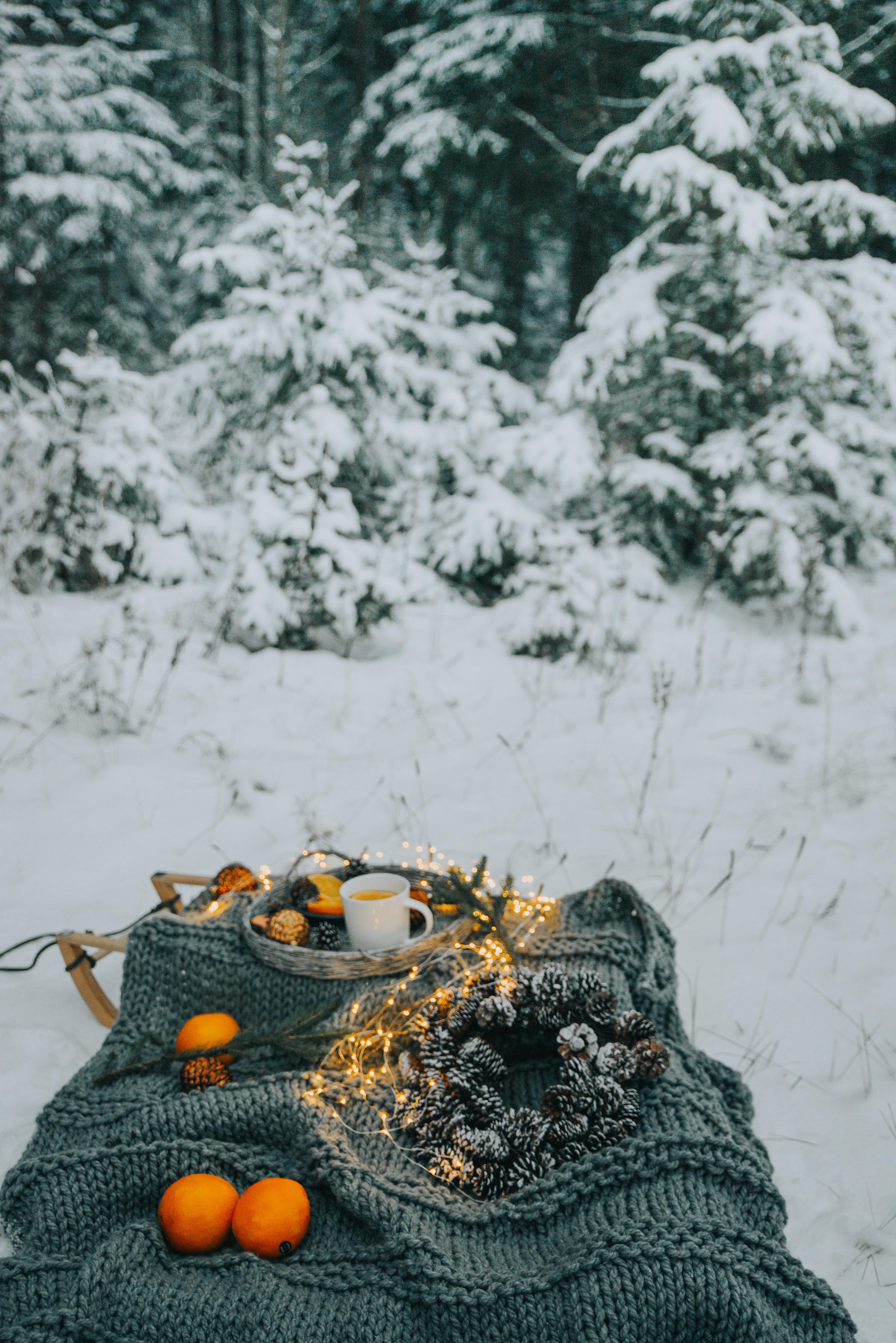 80279 Hintergrundbild 540x960 kostenlos auf deinem Handy, lade Bilder Weihnachten, Winterreifen, Lebensmittel, Schnee, Wald, Stimmung, Gemütlichkeit, Komfort, Picknick 540x960 auf dein Handy herunter