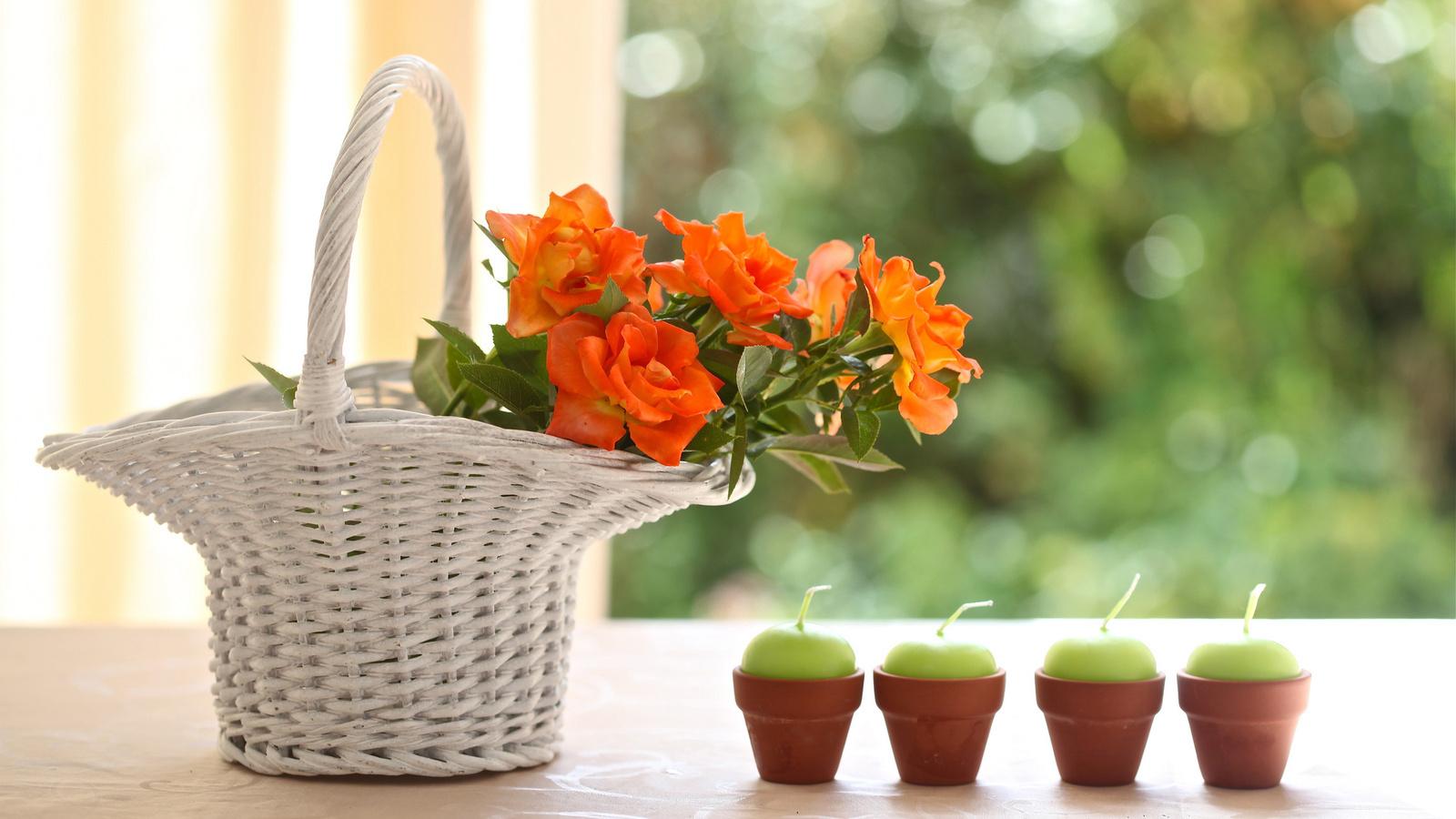 20933 скачать обои Растения, Цветы, Букеты, Свечи - заставки и картинки бесплатно