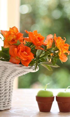 20933 télécharger le fond d'écran Plantes, Fleurs, Bouquets, Bougies - économiseurs d'écran et images gratuitement