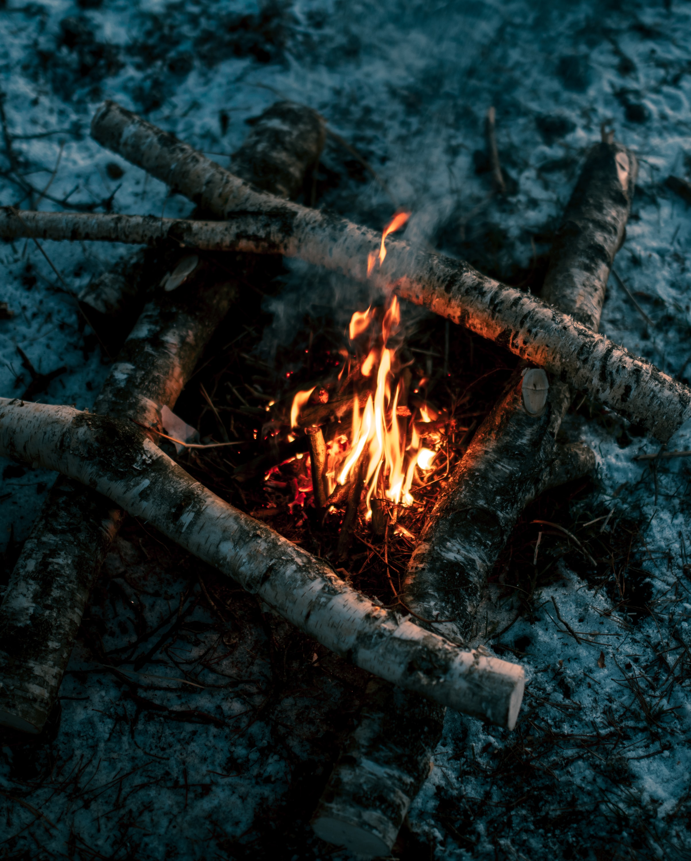 140870 Screensavers and Wallpapers Firewood for phone. Download Nature, Fire, Bonfire, Flame, Firewood pictures for free