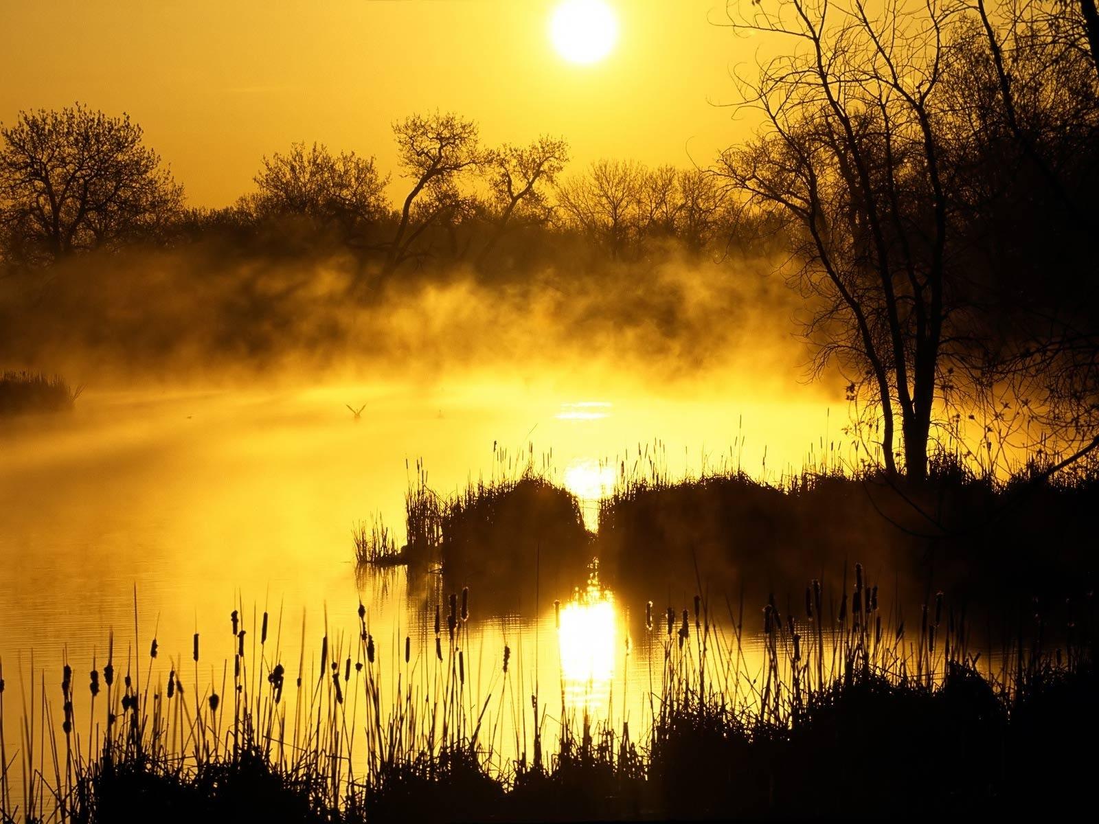 7712 скачать обои Пейзаж, Река, Закат, Солнце - заставки и картинки бесплатно