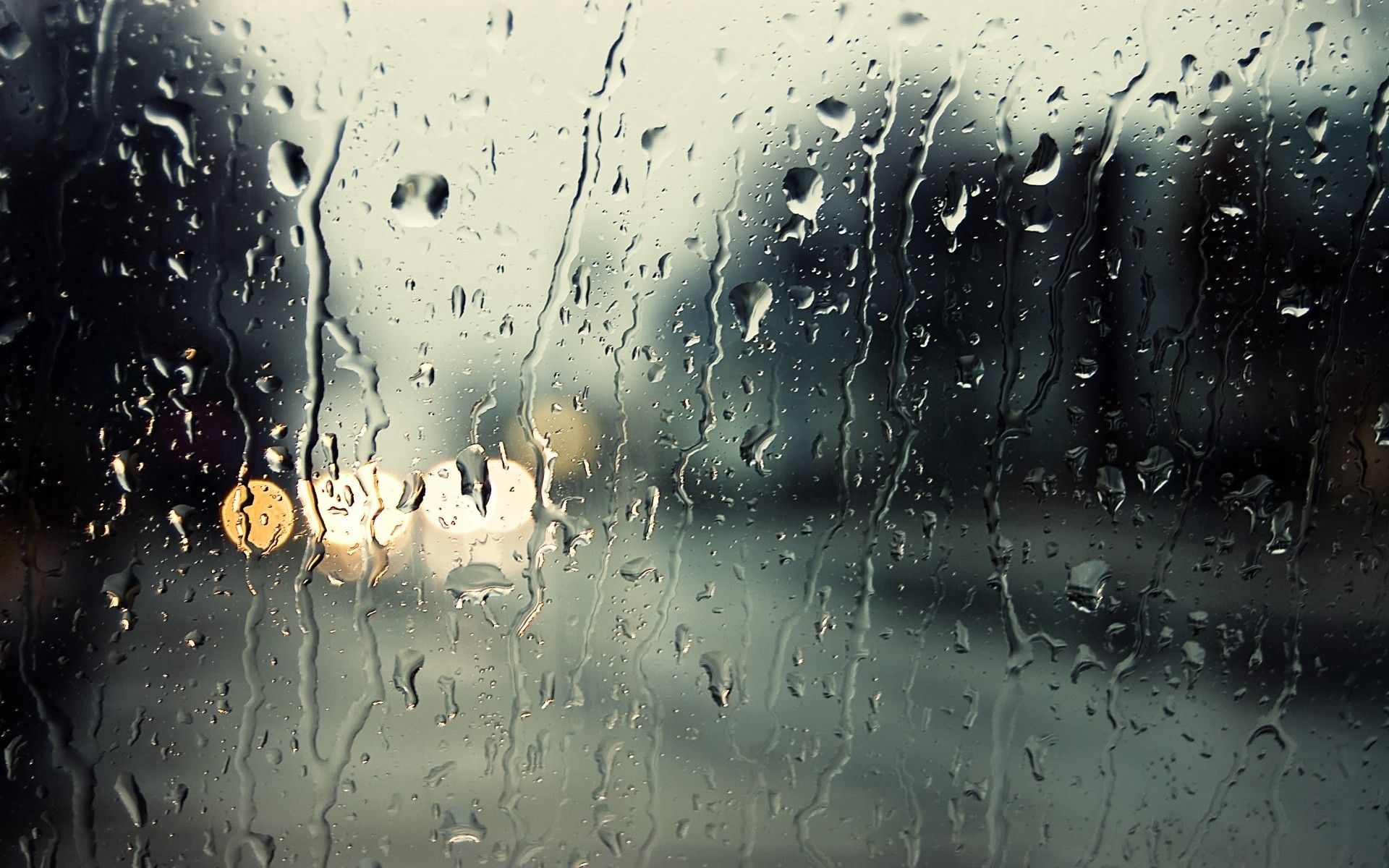 148013 download wallpaper Macro, Rain, Glass, Drops, Moisture screensavers and pictures for free