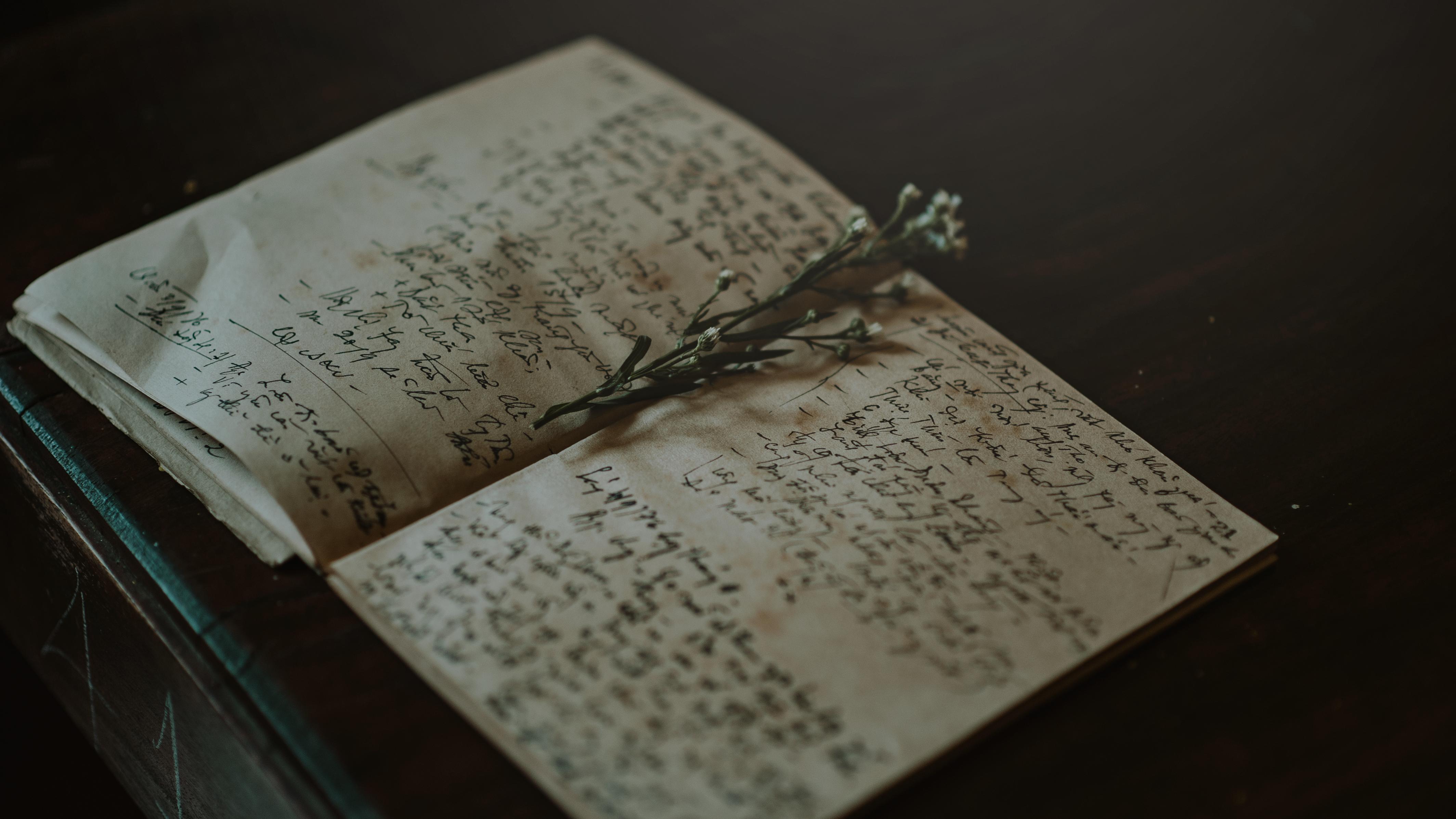 139567 скачать обои Разное, Тетрадь, Гербарий, Растение, Записи - заставки и картинки бесплатно