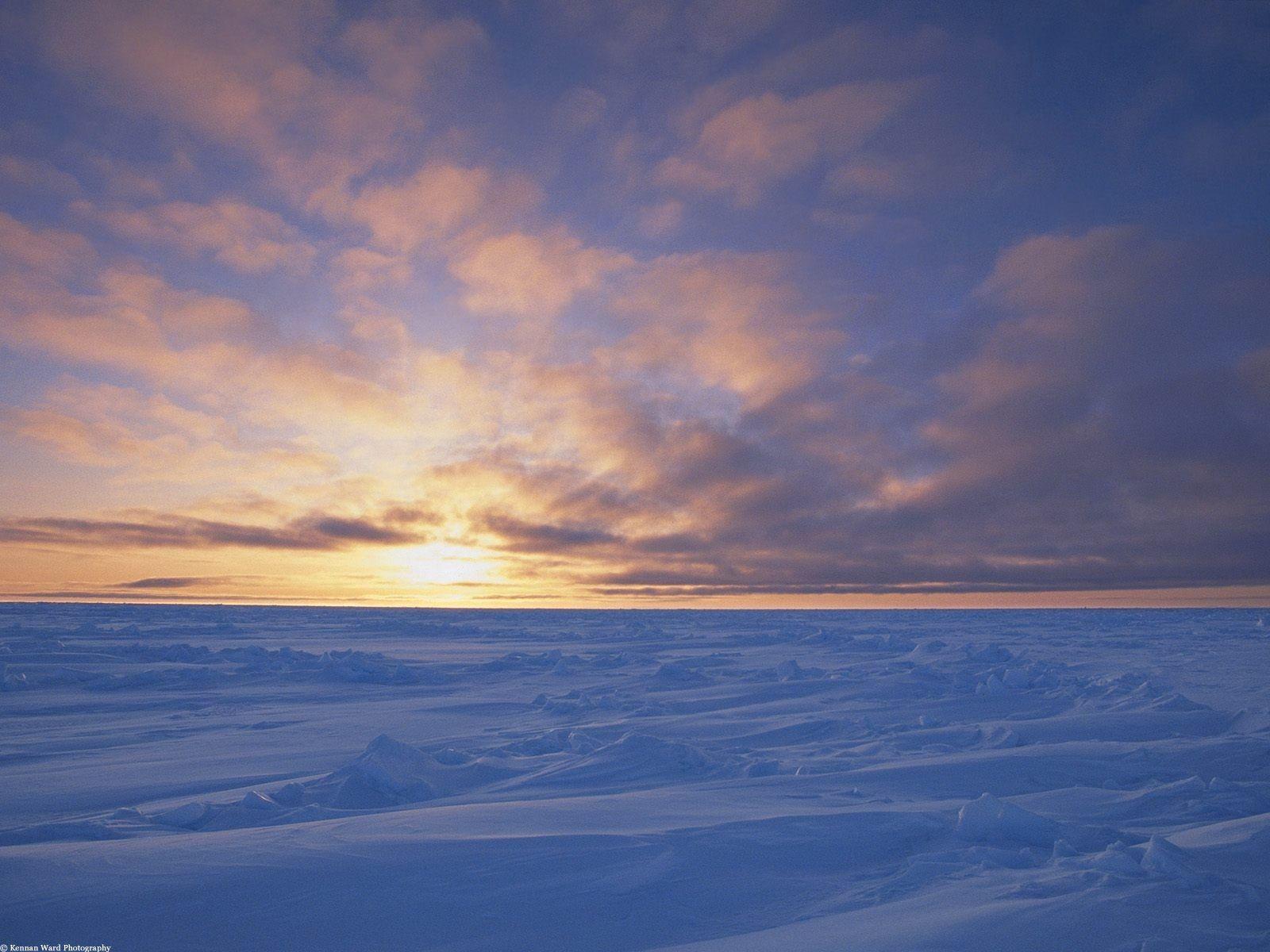 50991 скачать обои Природа, Канада, Снег, Холод, Небо, Пустыня - заставки и картинки бесплатно