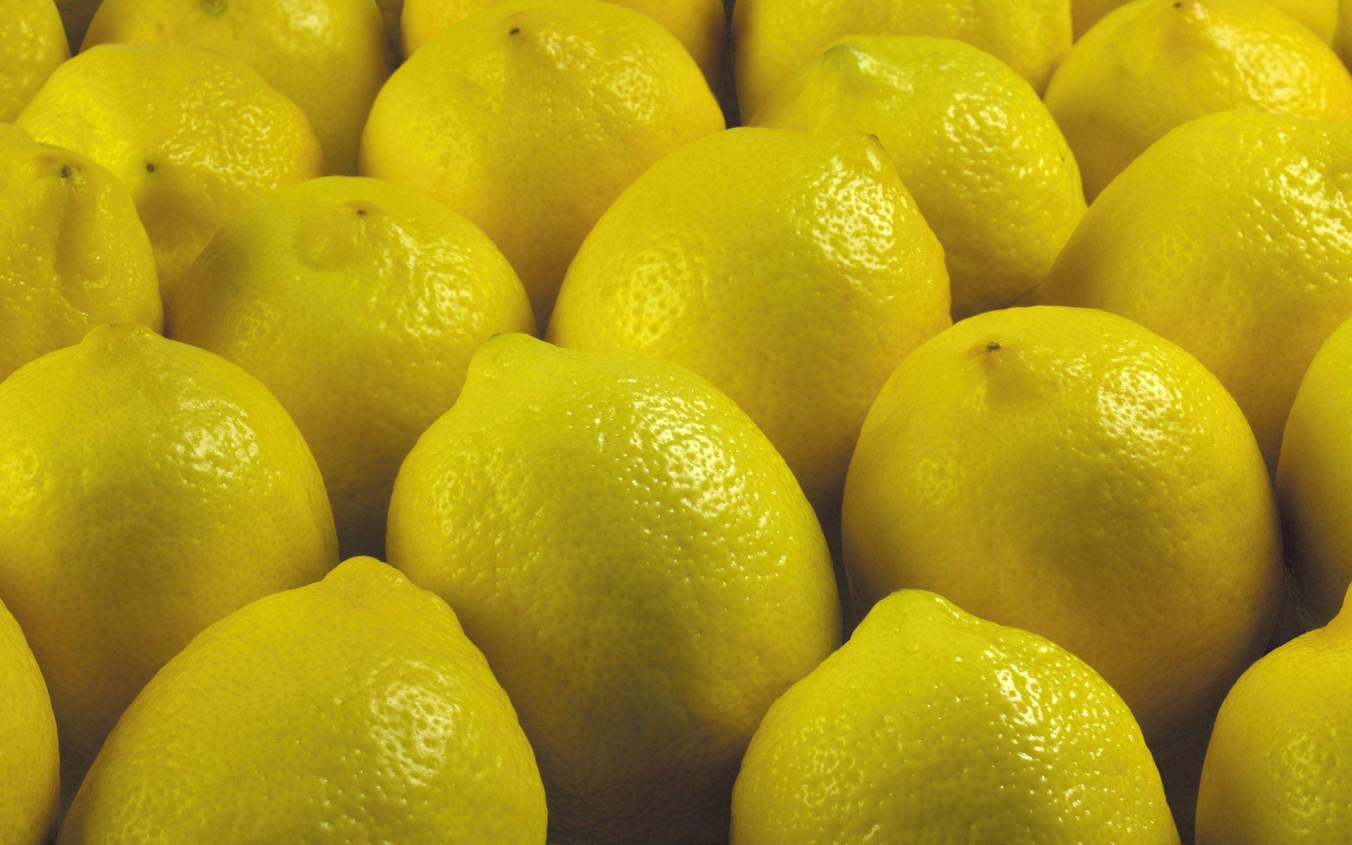 91922 télécharger le fond d'écran Nourriture, Citron, Le Fruit, Fruit - économiseurs d'écran et images gratuitement