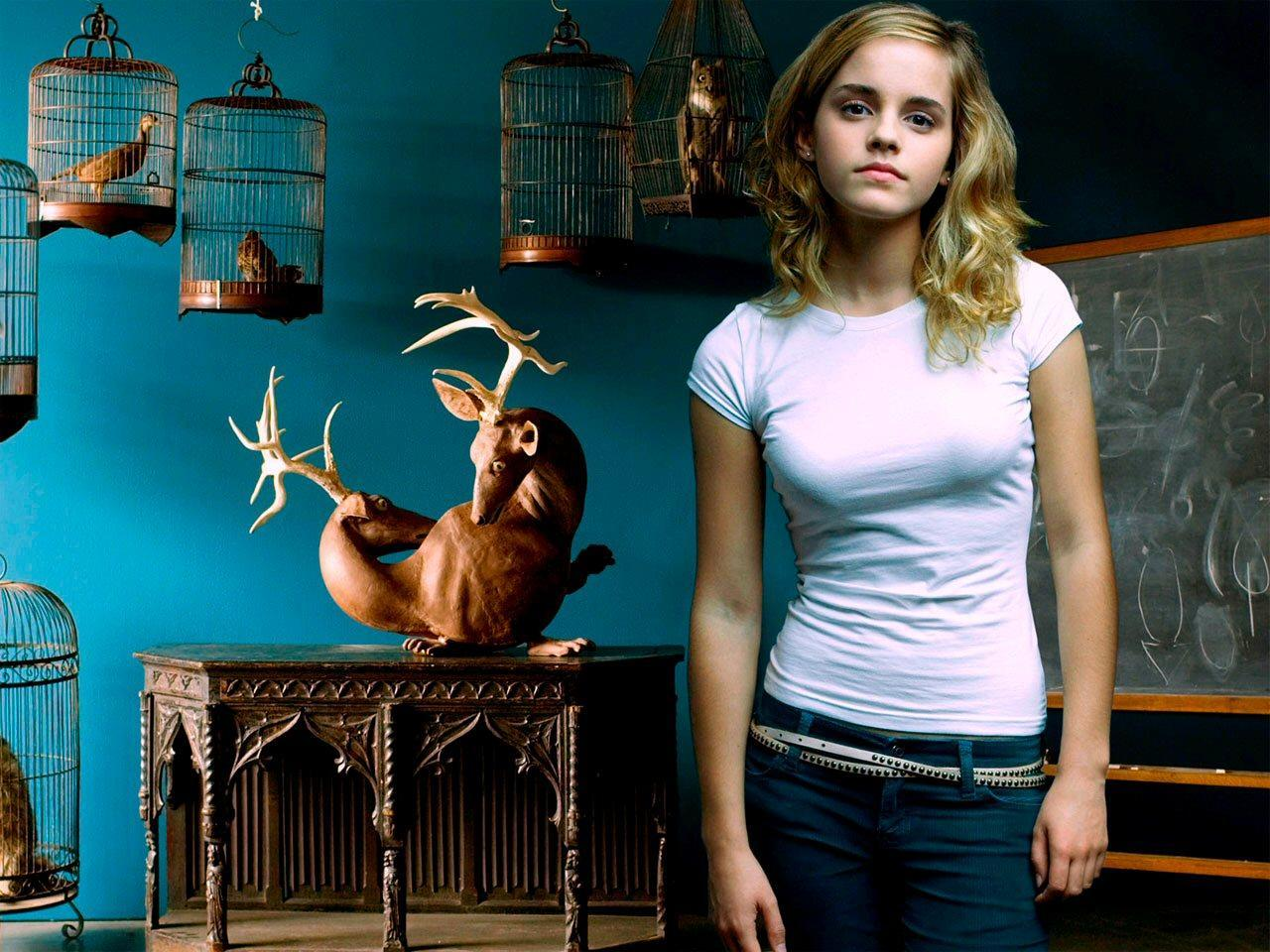 41594 download wallpaper Cinema, People, Harry Potter, Emma Watson screensavers and pictures for free