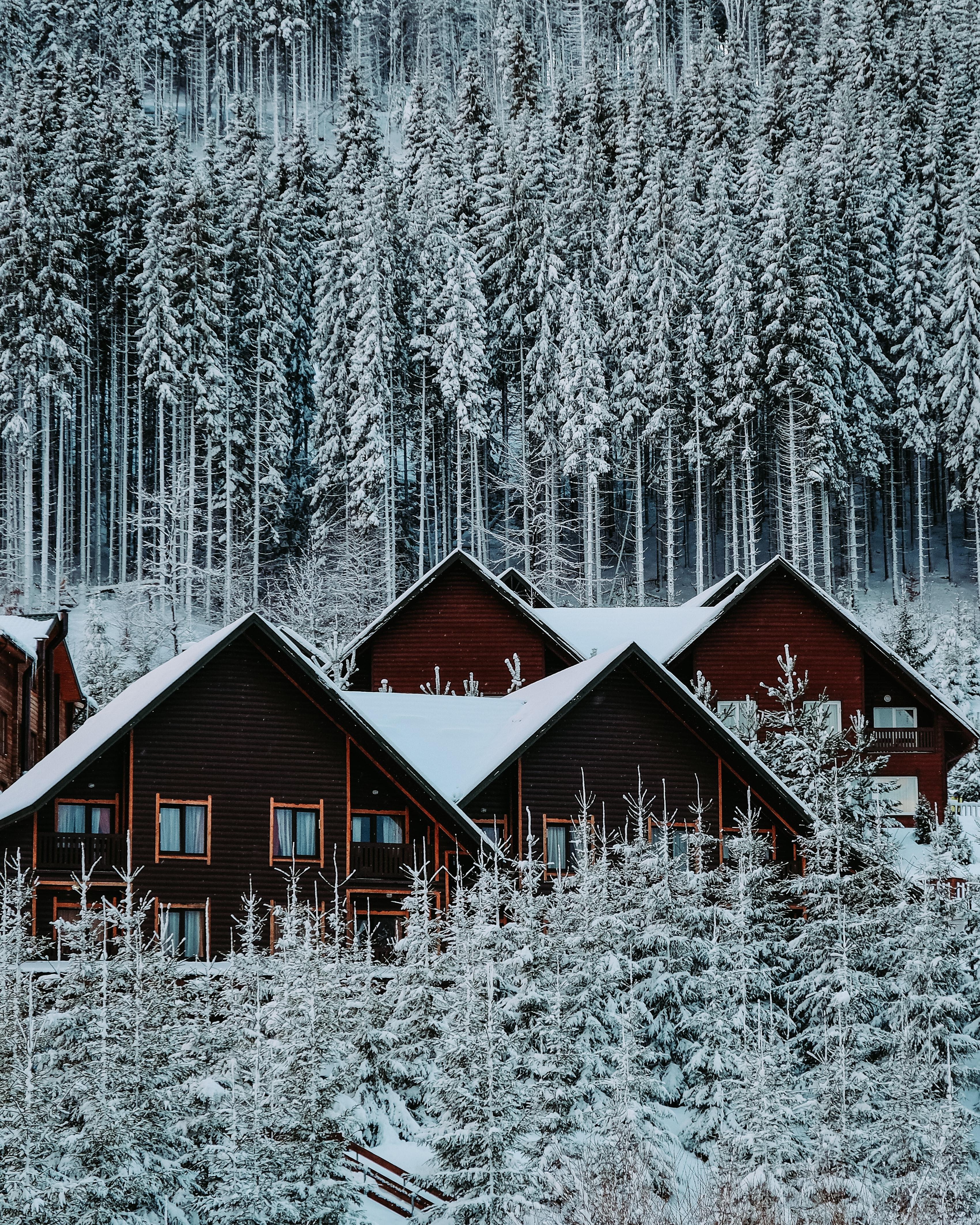 68257 Заставки и Обои Дома на телефон. Скачать Дома, Зима, Природа, Снег, Лес картинки бесплатно