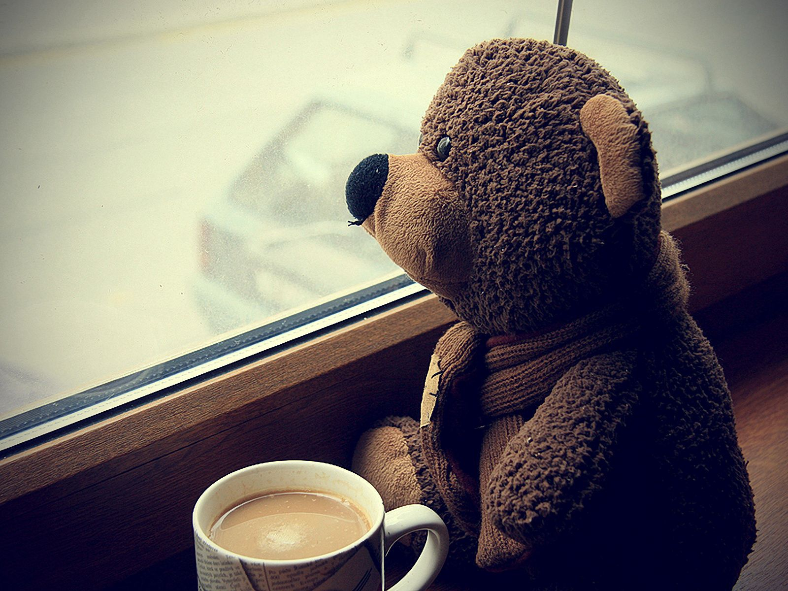 156049 download wallpaper Teddy Bear, Coffee, Miscellanea, Miscellaneous, Cup, Toy, Window, Mood, Expectation, Waiting screensavers and pictures for free