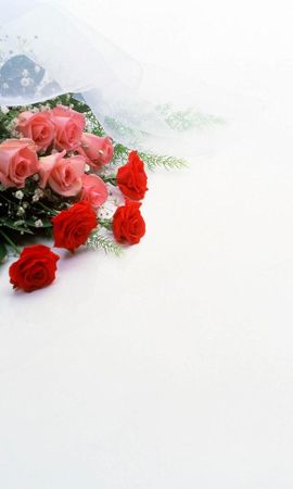 25583 скачать обои Растения, Цветы, Букеты - заставки и картинки бесплатно
