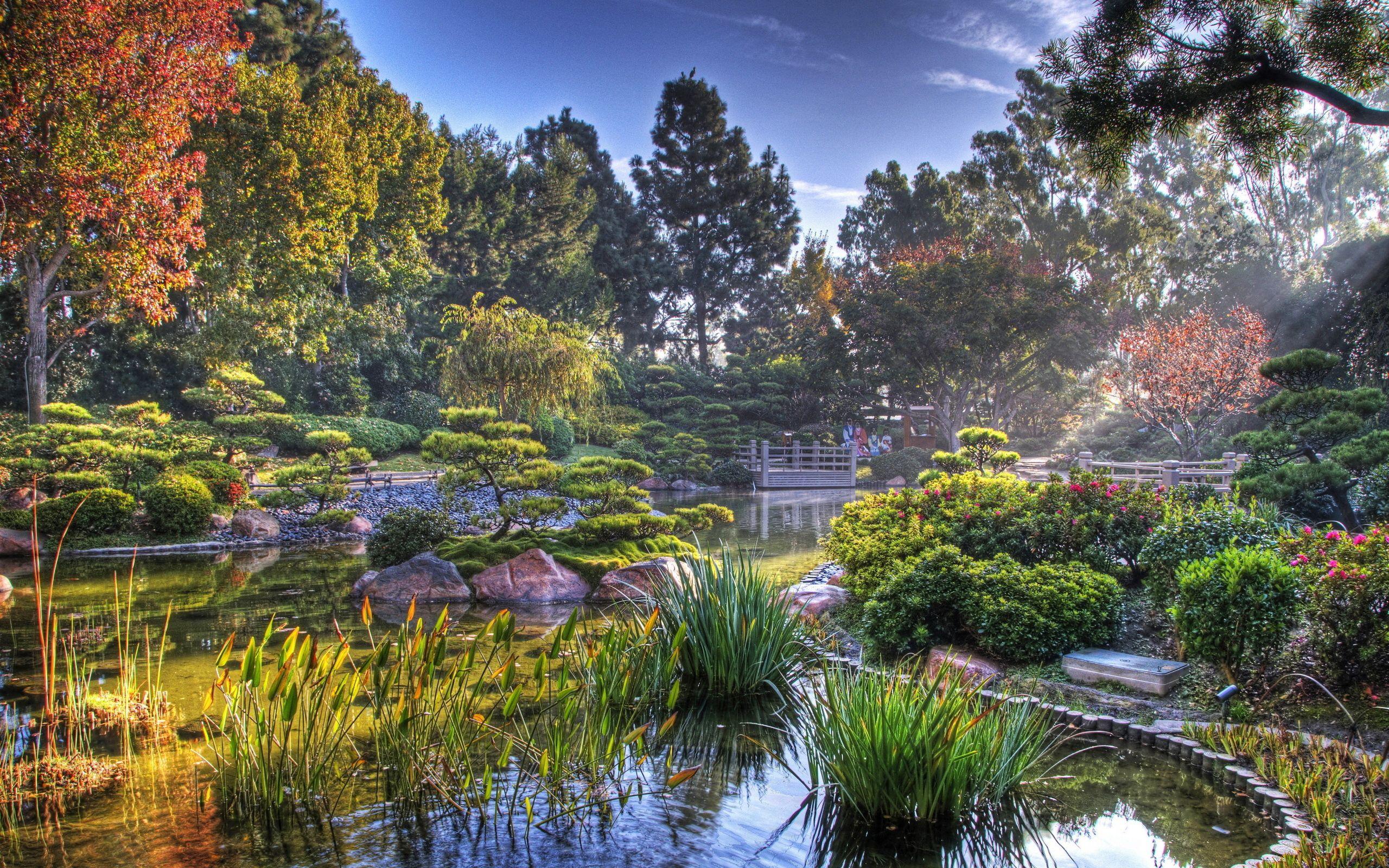 135568 télécharger le fond d'écran Nature, Jardin, Étang, Végétation, Briller, Lumière, Couleurs, Couleur, Paysage - économiseurs d'écran et images gratuitement