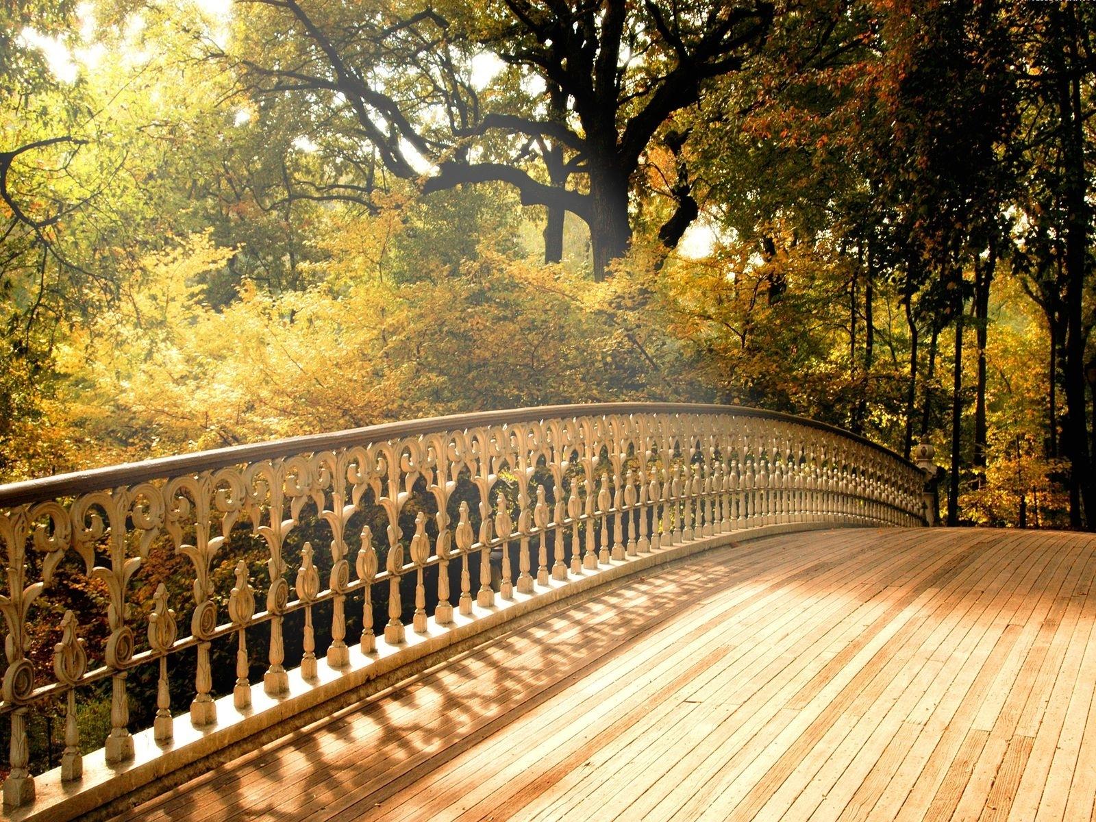 4182 скачать обои Пейзаж, Мосты, Деревья - заставки и картинки бесплатно