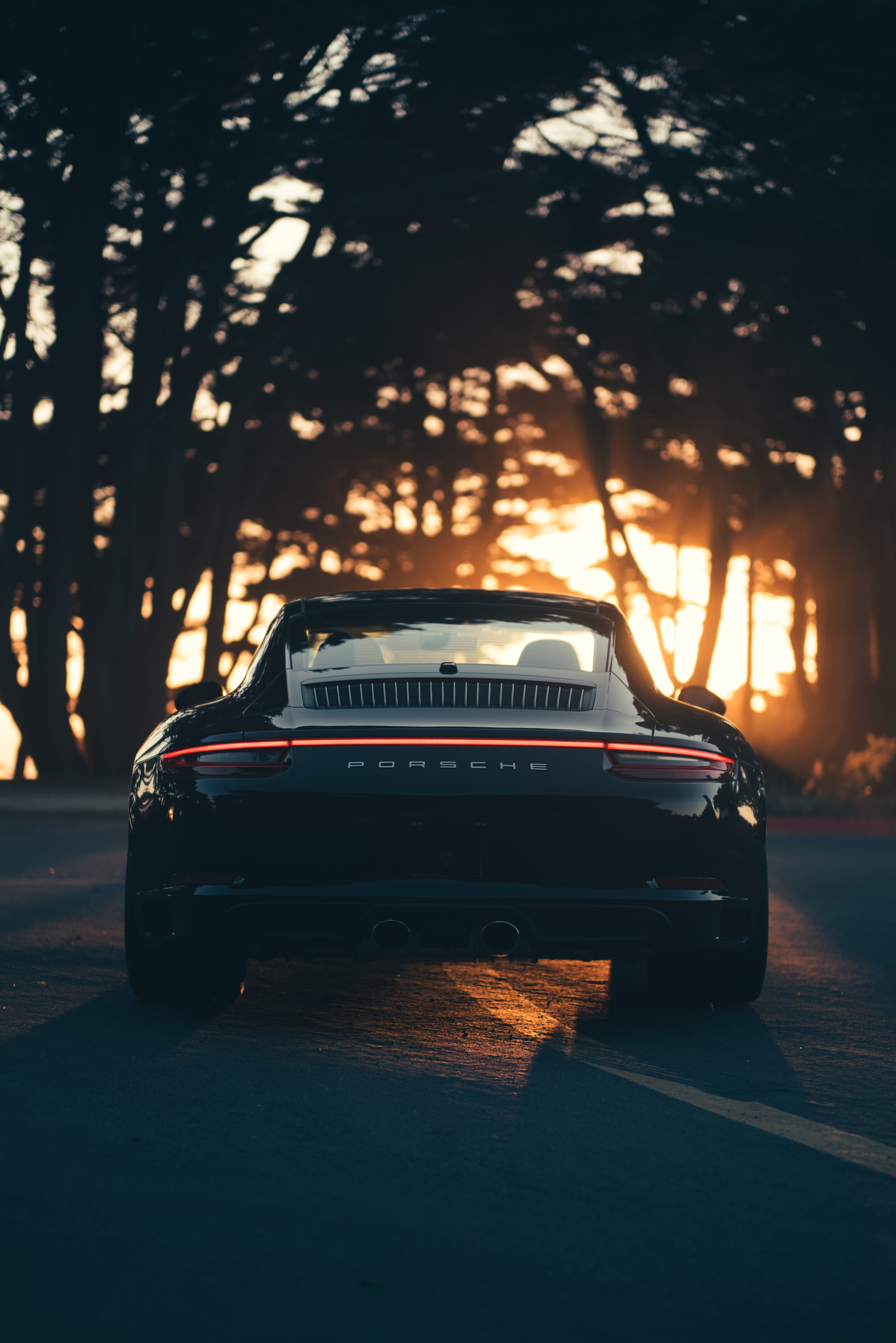 82731 download wallpaper Porsche, Sports, Cars, Sports Car, Back View, Rear View, Sunlight screensavers and pictures for free