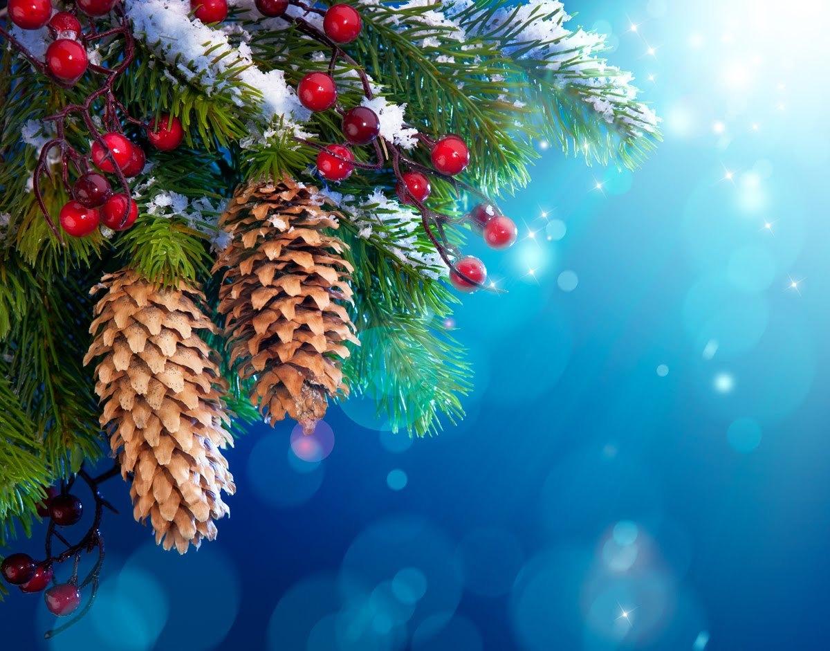 16389 скачать обои Новый Год (New Year), Праздники, Фон, Шишки, Елки, Рождество (Christmas, Xmas) - заставки и картинки бесплатно