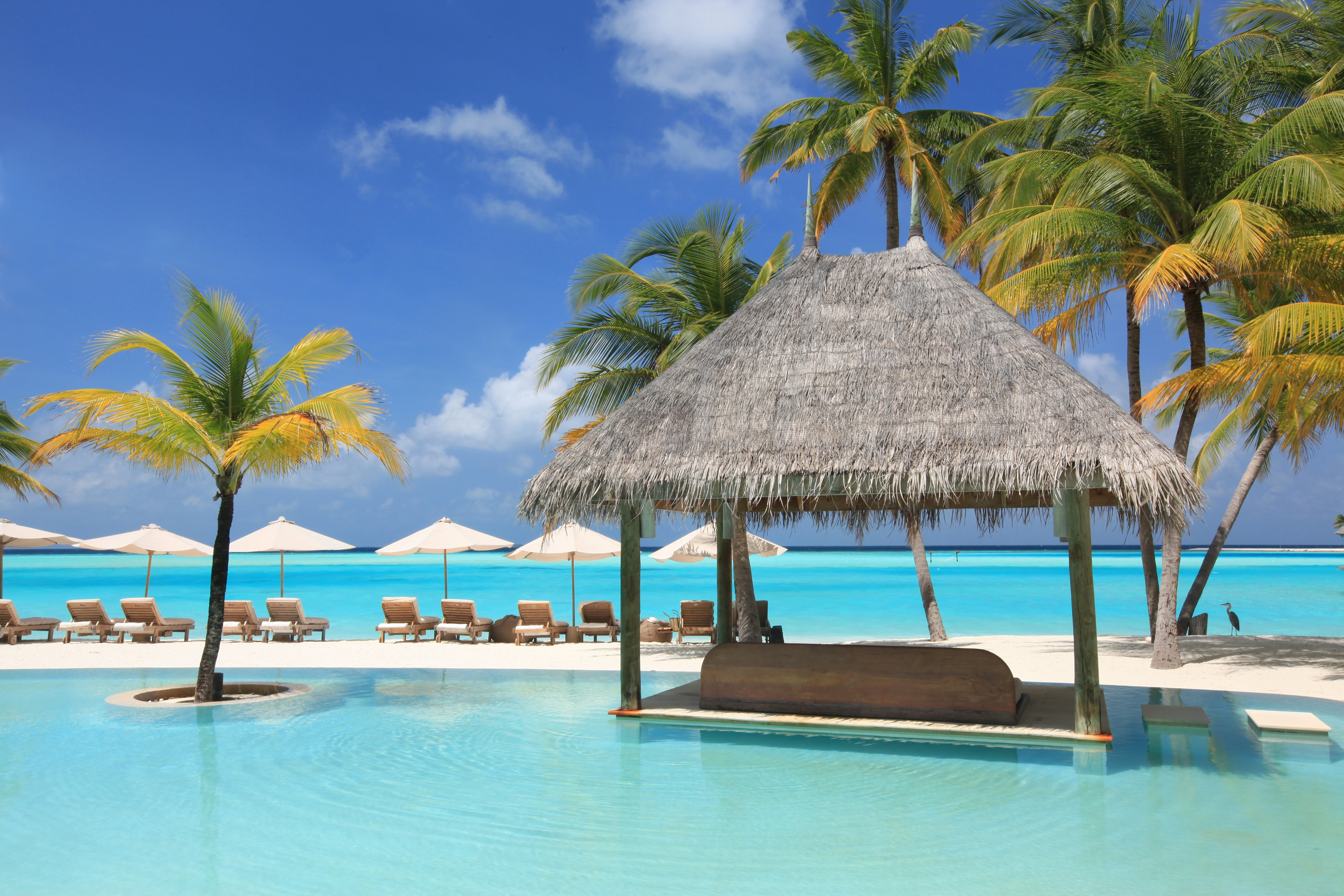 64035 download wallpaper Miscellanea, Miscellaneous, Relaxation, Rest, Sun Loungers, Beds, Pool, Palms screensavers and pictures for free