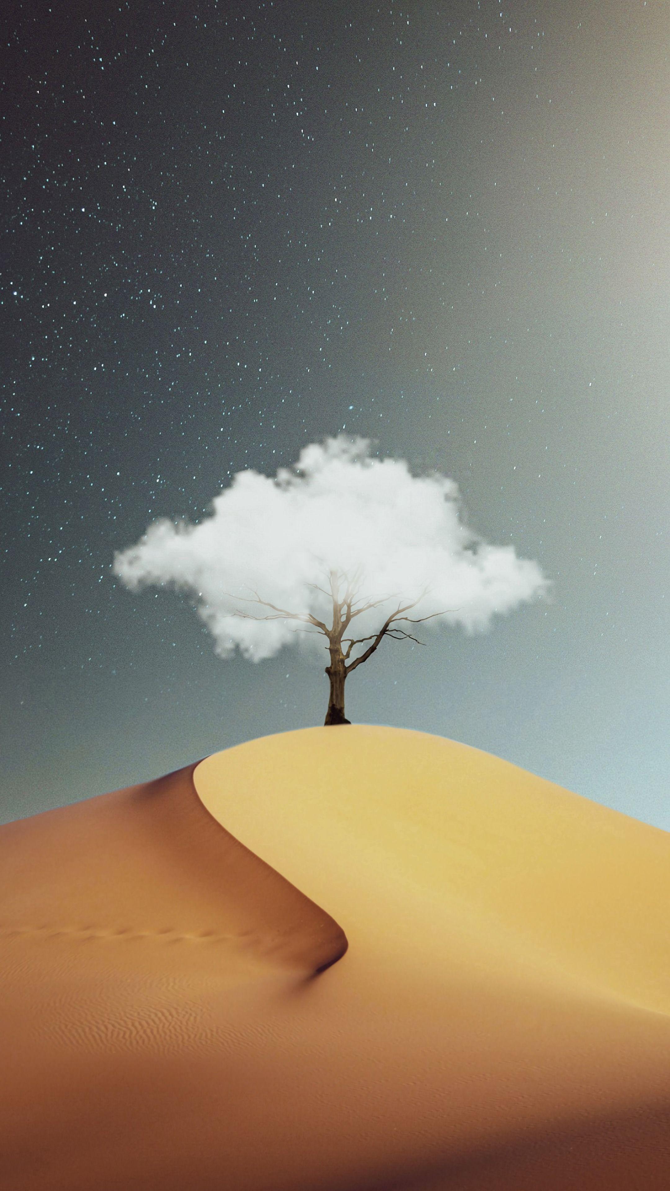 144690 免費下載壁紙 杂项, 木头, 云, 云端, 爬坡道, 山丘, 沙, 沙漠 屏保和圖片