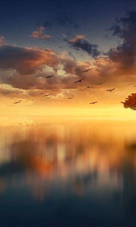 137515 baixar papel de parede Natureza, Madeira, Árvore, Horizonte, Pôr Do Sol, Photoshop, Mar - protetores de tela e imagens gratuitamente