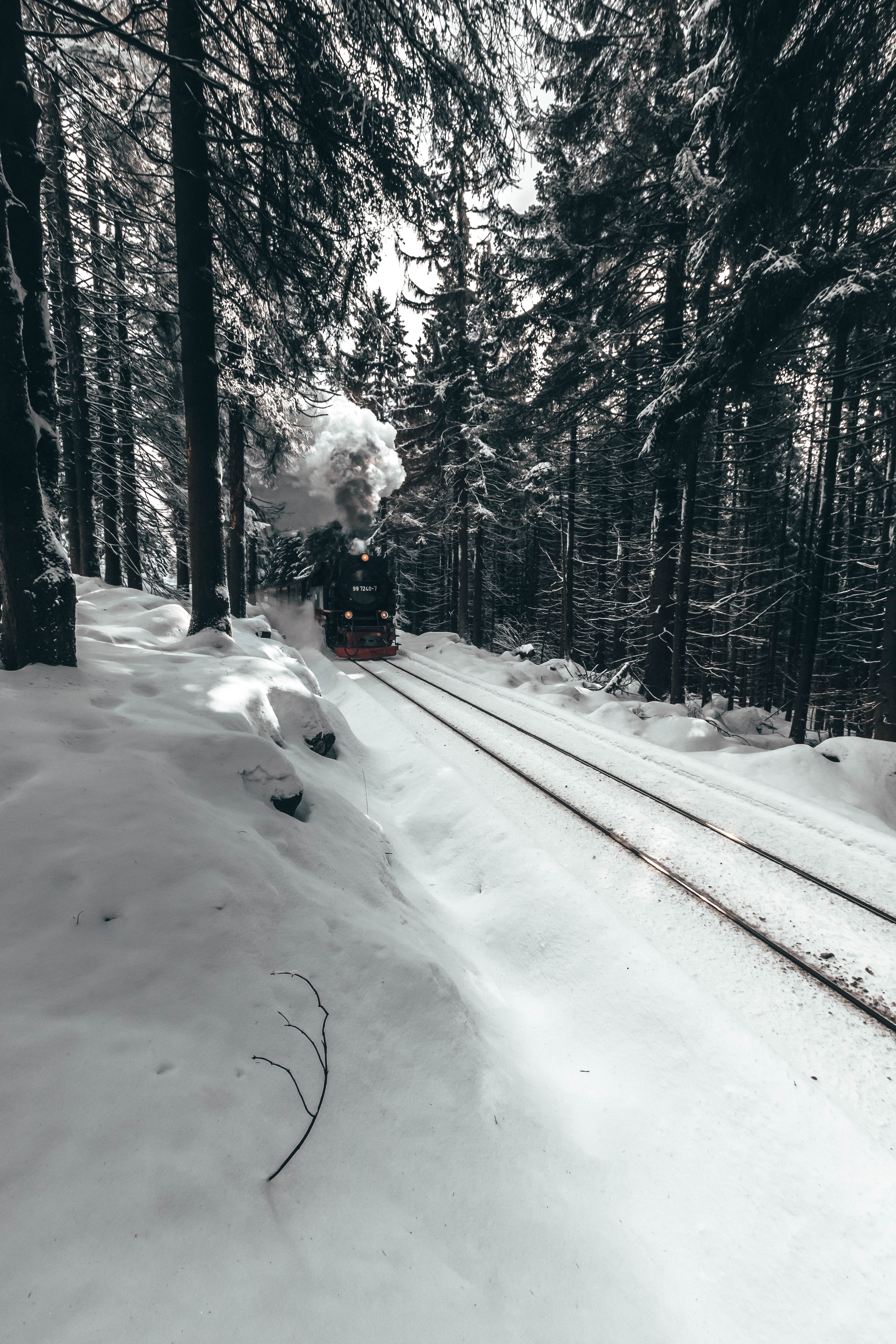 53656 Screensavers and Wallpapers Train for phone. Download Winter, Snow, Miscellanea, Miscellaneous, Forest, Train, Locomotive, Steam Locomotive pictures for free