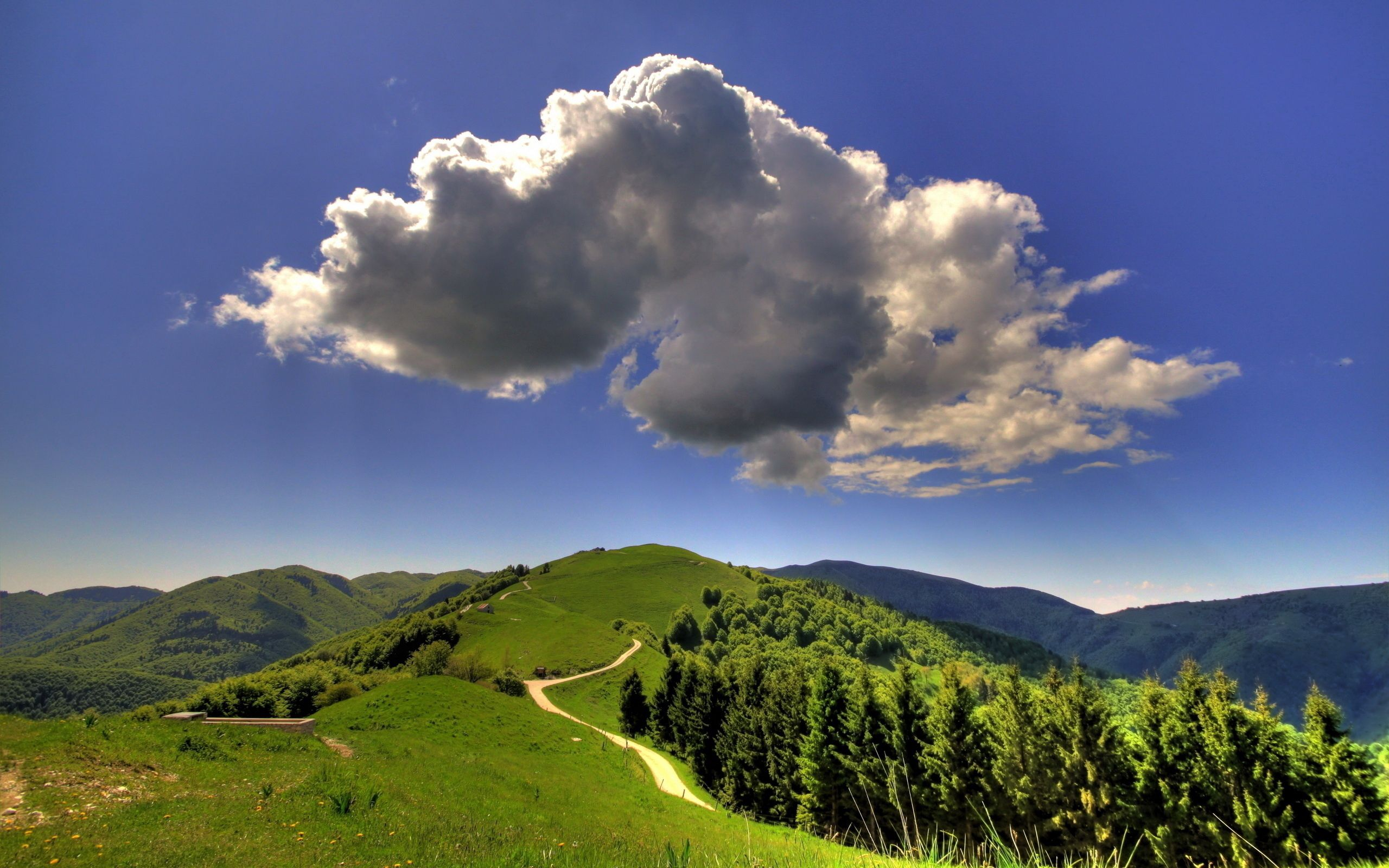 87093 免費下載壁紙 性质, 云, 云端, 体积, 天空, 蓝色的, 踪迹, 小径, 风景, 景观, 清除, 清楚, 森林, 绿色的, 山 屏保和圖片