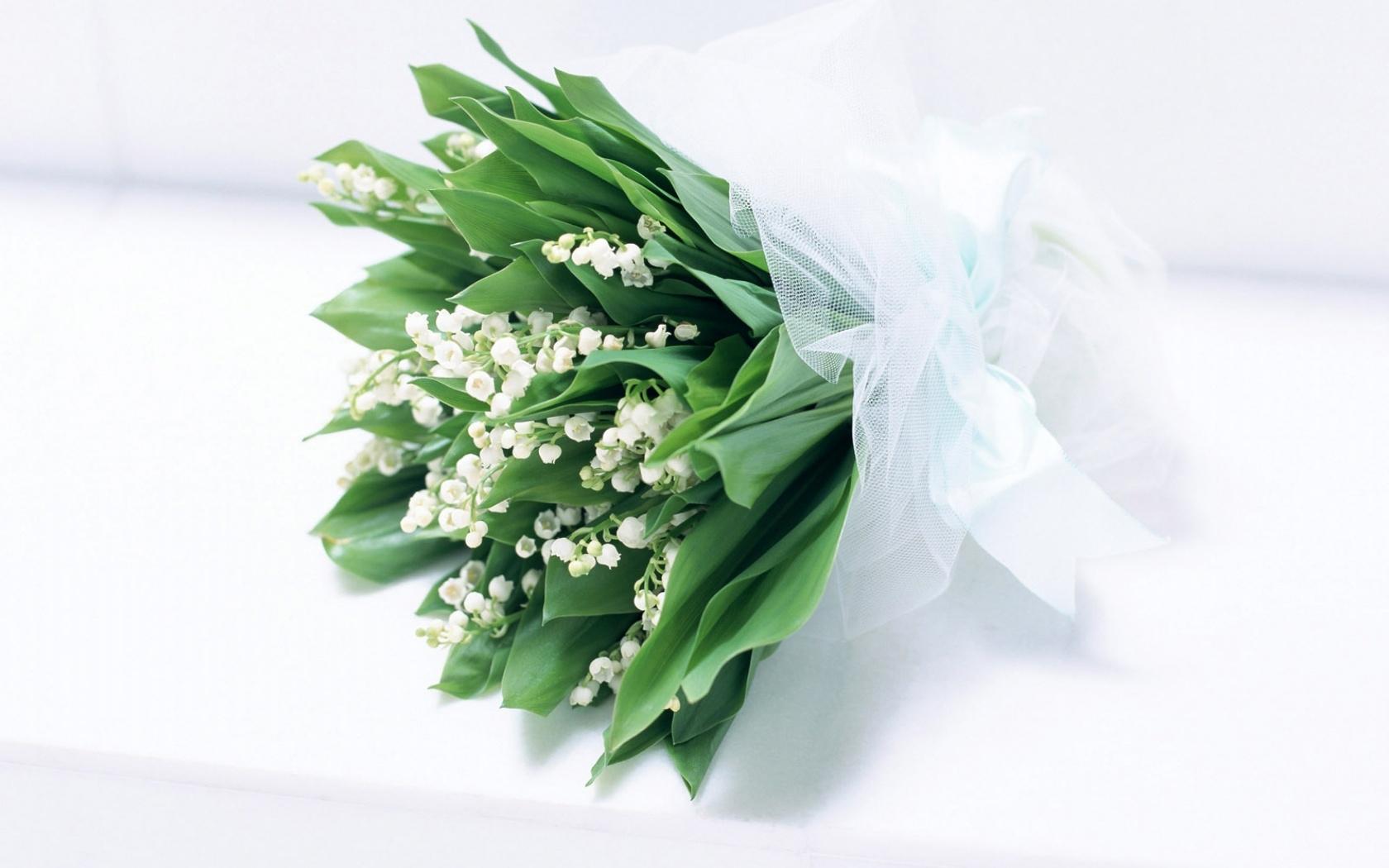 39428 télécharger le fond d'écran Plantes, Fleurs, Bouquets, Muguet - économiseurs d'écran et images gratuitement