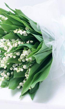 39428 скачать обои Растения, Цветы, Букеты, Ландыши - заставки и картинки бесплатно