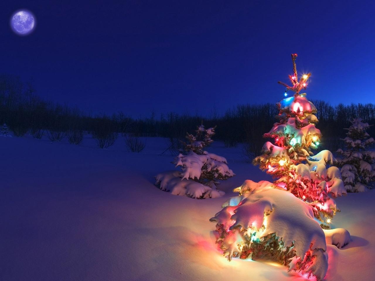 24923 télécharger le fond d'écran Fêtes, Paysage, Hiver, Nouvelle Année, Neige, Sapins, Noël - économiseurs d'écran et images gratuitement