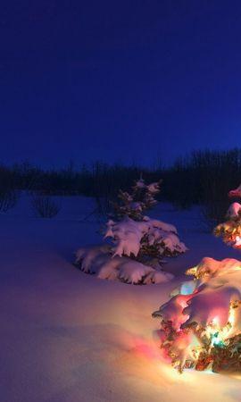 24923 скачать обои Праздники, Пейзаж, Зима, Новый Год (New Year), Снег, Елки, Рождество (Christmas, Xmas) - заставки и картинки бесплатно
