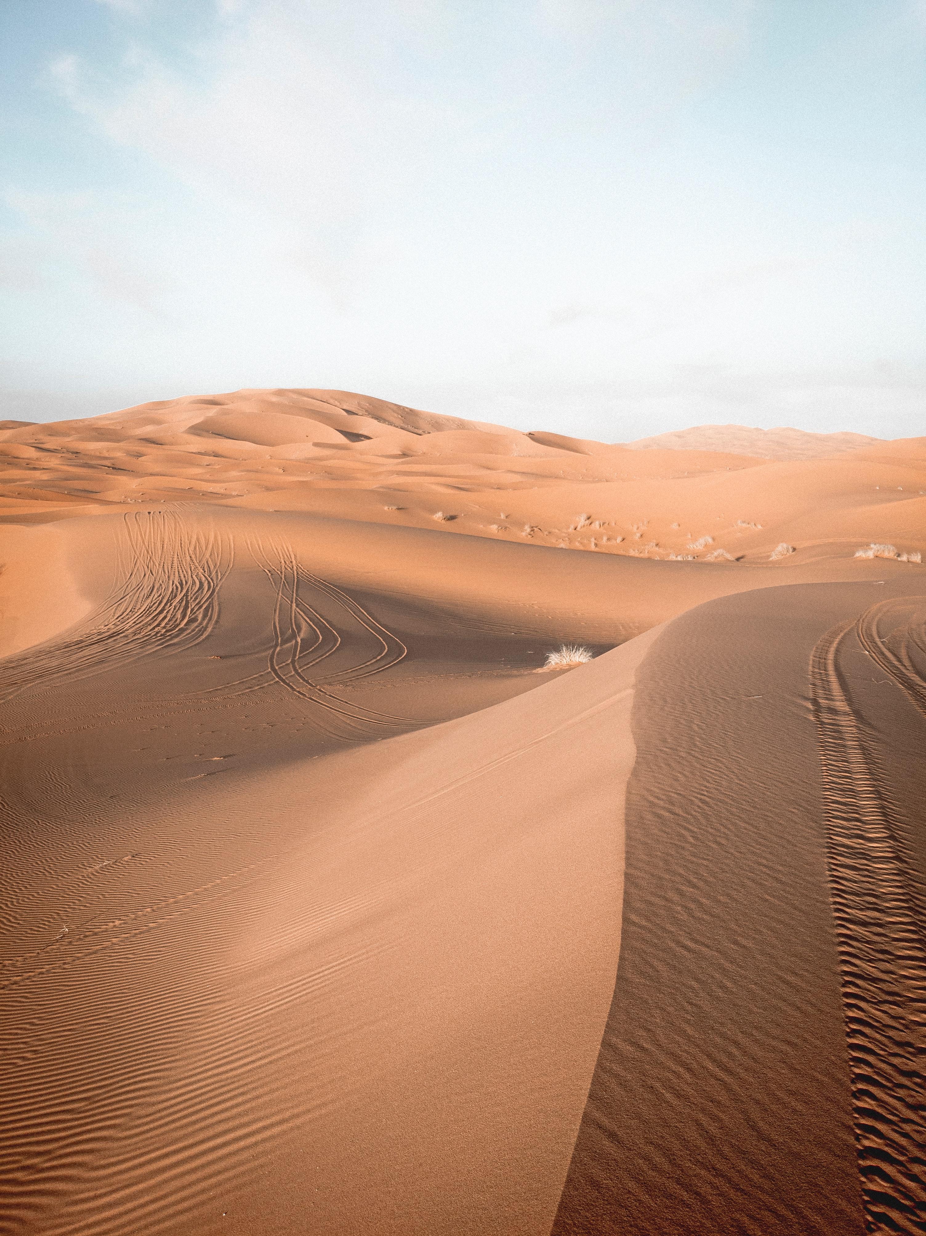 98839 Заставки и Обои Пустыня на телефон. Скачать Природа, Небо, Песок, Пустыня, Следы, Барханы картинки бесплатно