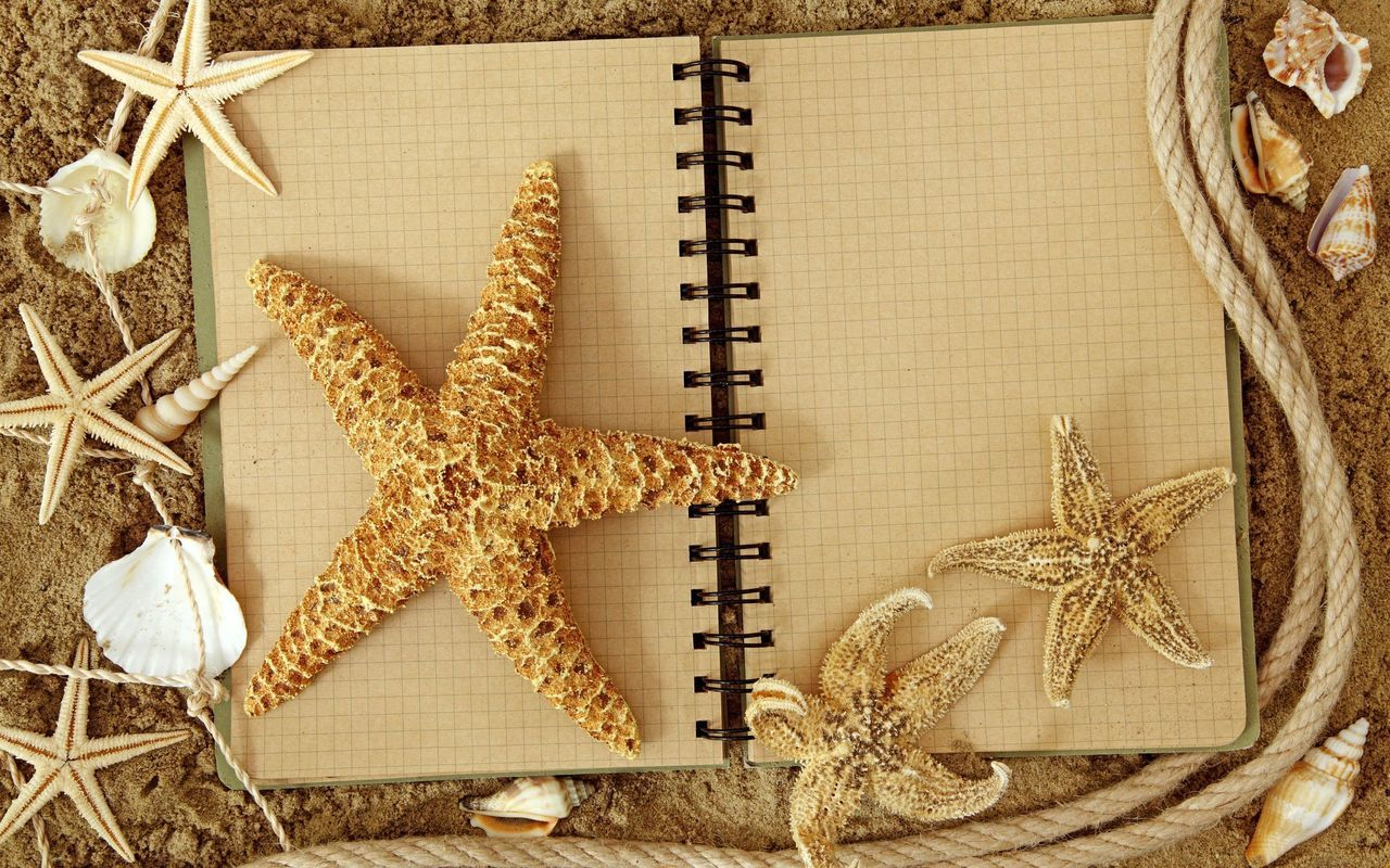 12283 download wallpaper Background, Starfish screensavers and pictures for free