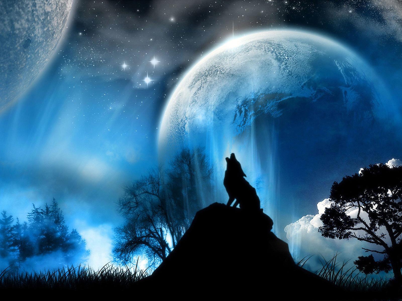 22979 скачать обои Животные, Волки, Планеты, Пейзаж, Небо - заставки и картинки бесплатно